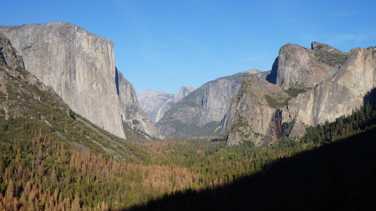 Der ikonische Tunnel-View-Blick ins Yosemite Valley mit El Capitan (links) und Half Dome (rechts im Hintergrund).