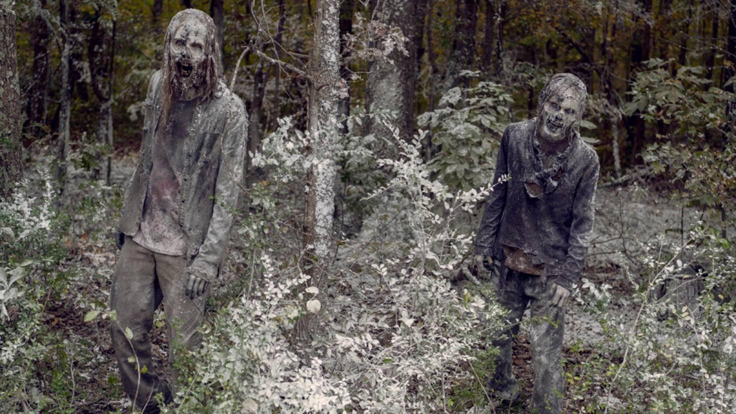 - The Walking Dead _ Season 9, Episode 16 - Photo Credit: Gene Page/AMC