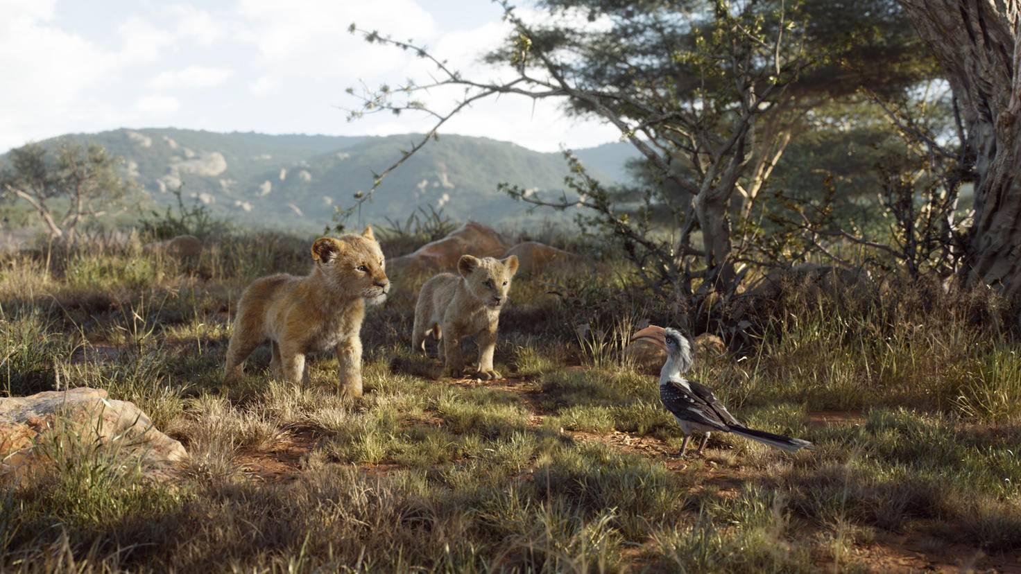 Zazu accompanies the two lion children everywhere.