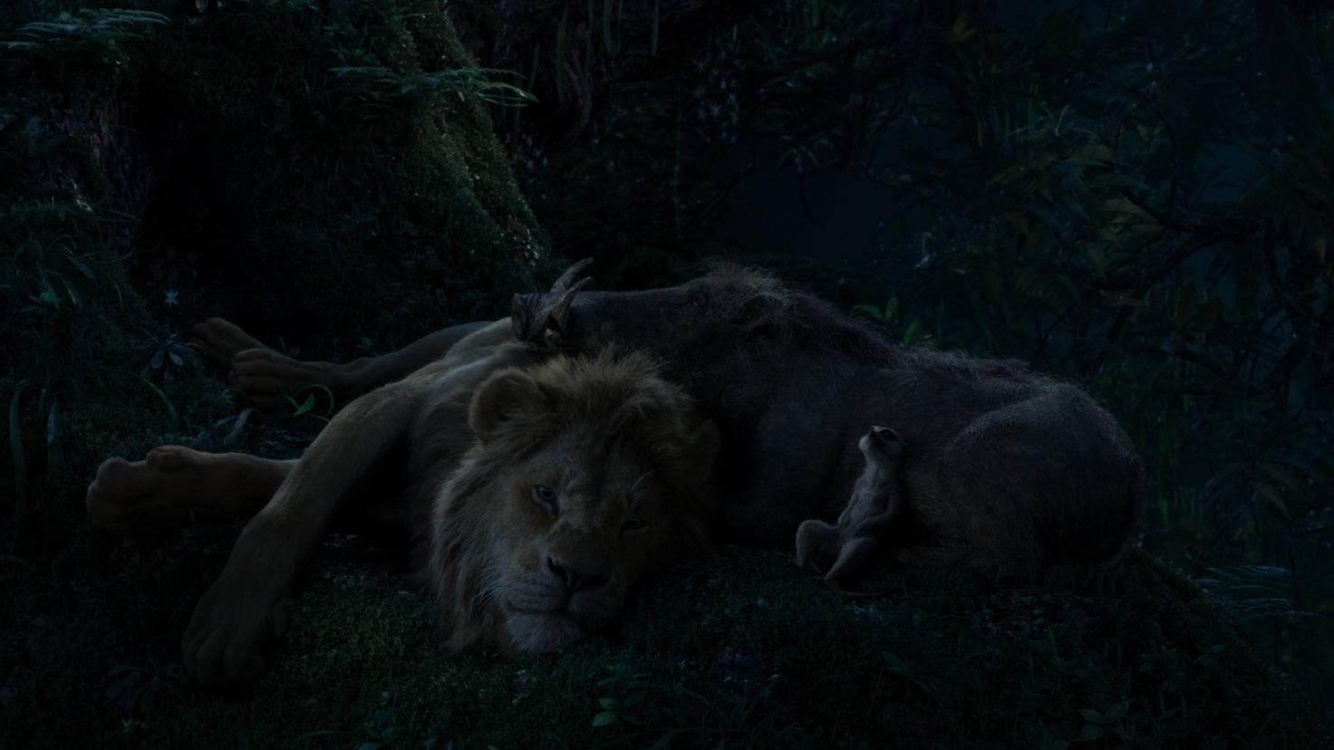 Unterdessen chillt Simba mit Timon und Pumbaa im Dschungel.