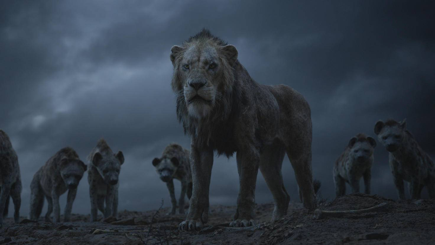Scar appoints himself after Mufasa's death without further ado the king of the lions.