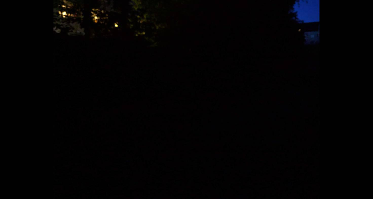 Und hier das gleiche Bild ohne den Nachtsichtmodus.