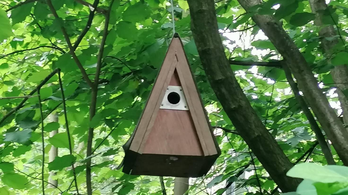 Und hier das gleiche Vogelhäuschen mit zweifachem digitalen Zoom. Vor allem die Kanten wirken besonders unsauber.