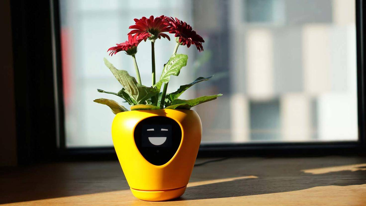 Lua-smarter Blumentopf-Mu Design-3