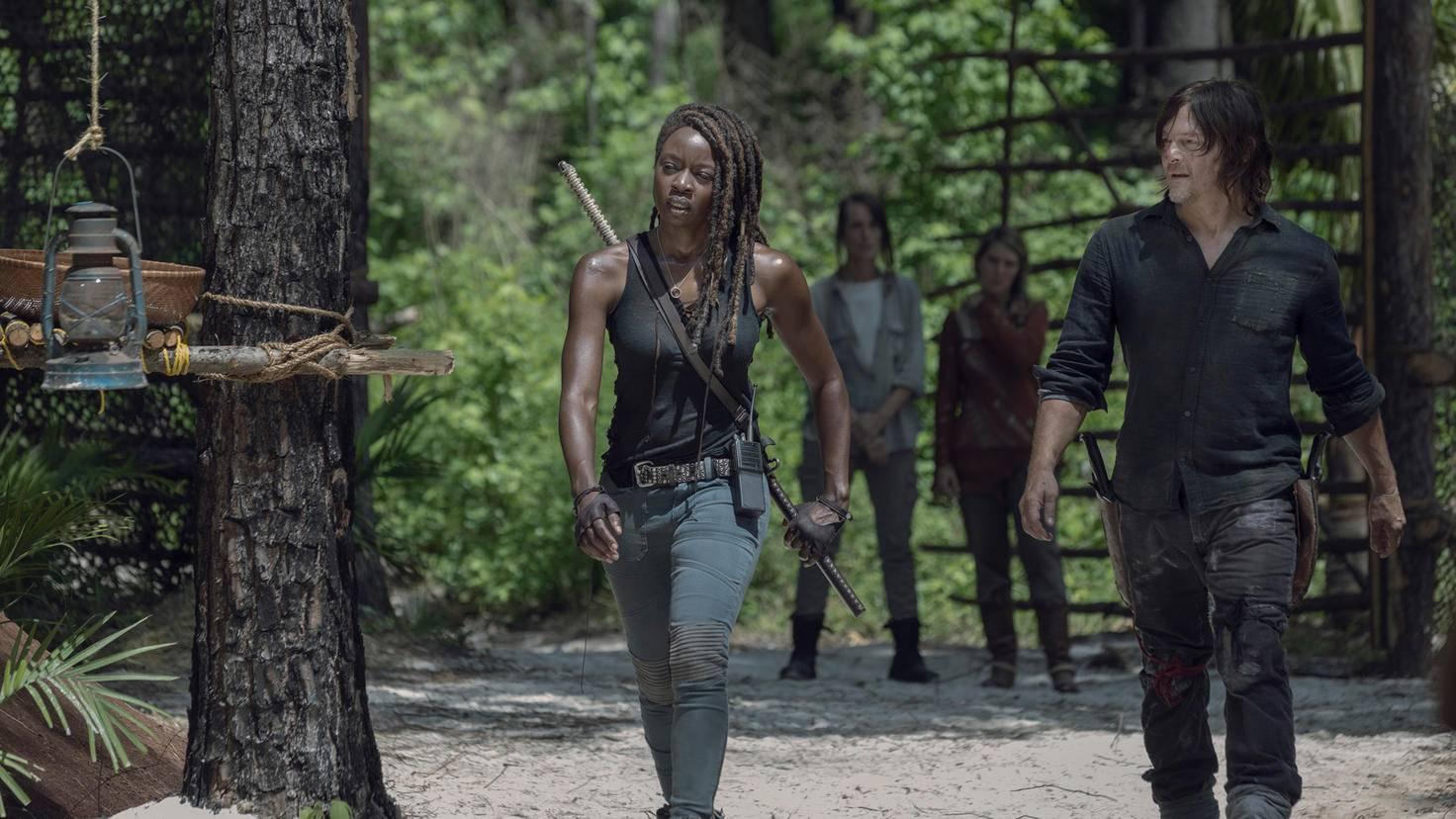 The Walking Dead Michonne Daryl