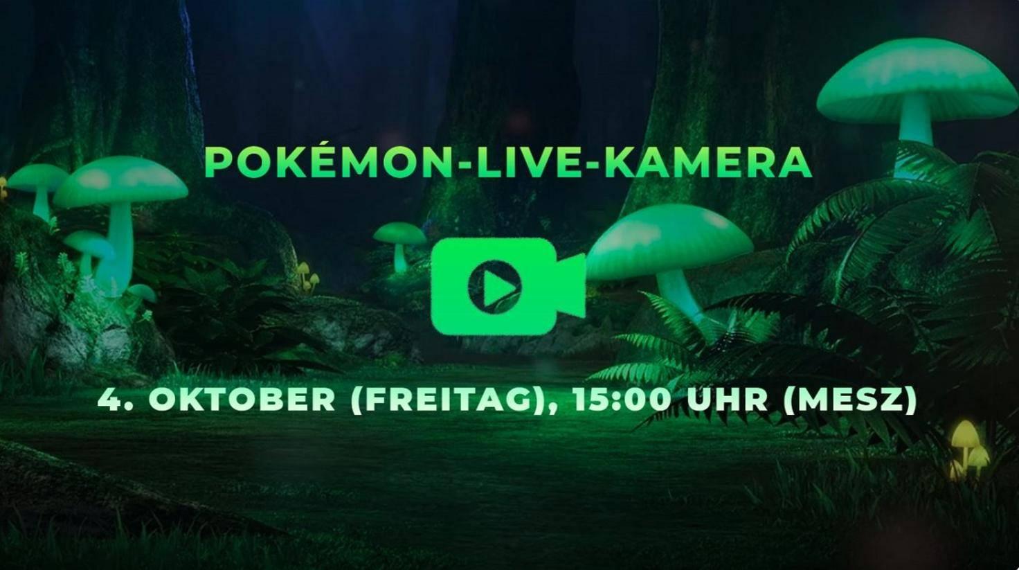 """""""Pokemon Schwert & Schild"""" Live-Stream"""