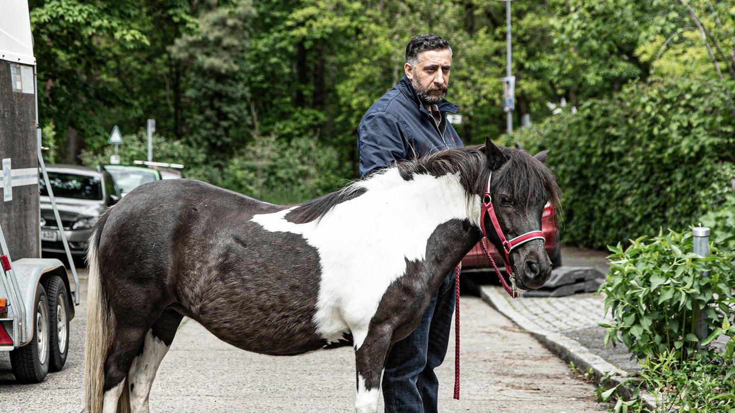 Ich glaub, mich tritt ein Pferd! Toni scheint wirklich zum Normalo zu werden.