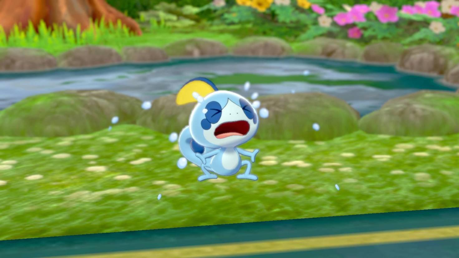 pokemon-schwert-schild-wasser-starter