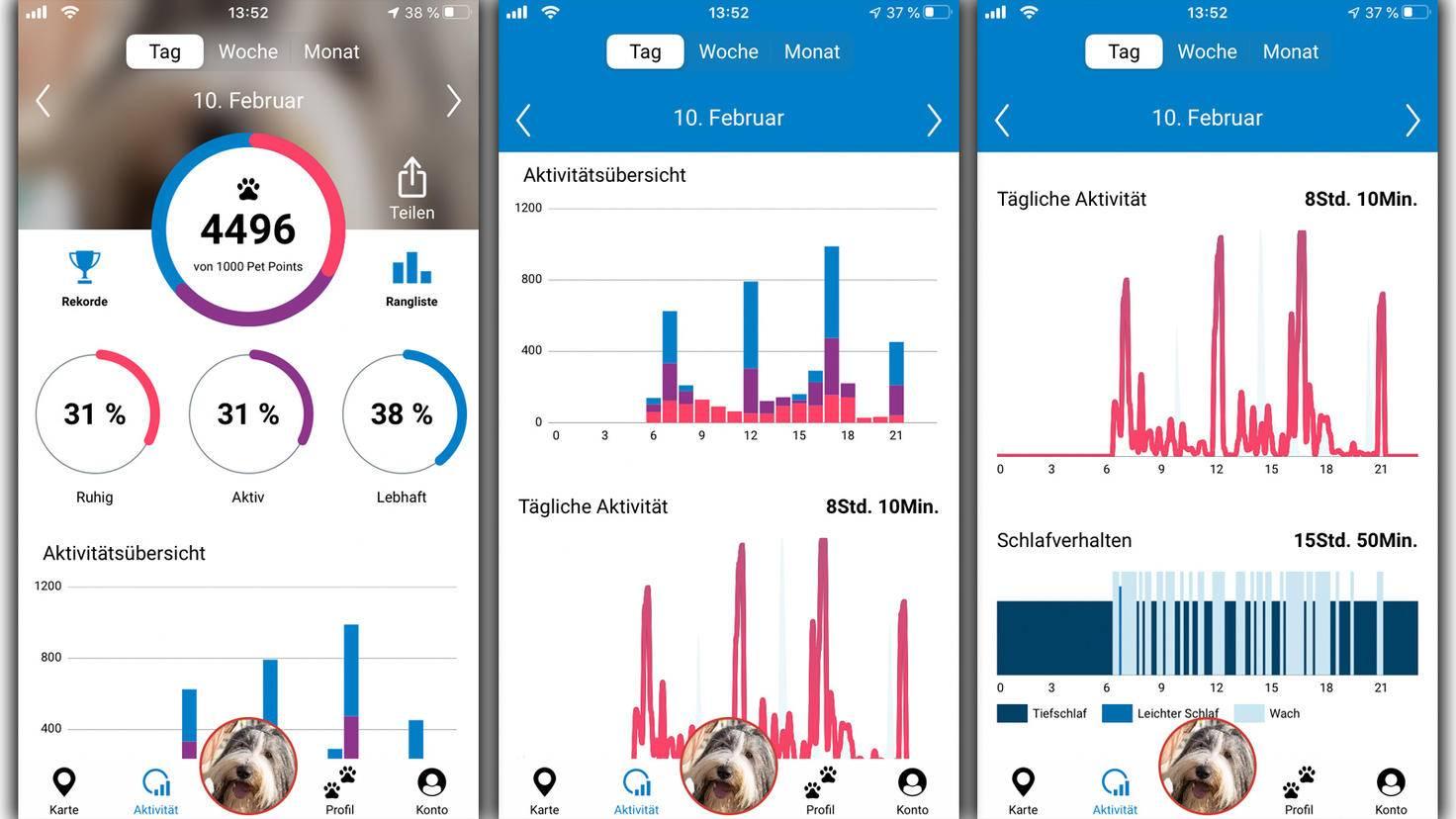 In der Tractive-App kannst Du Dir die Aktivitäten Deines Vierbeiners für einen bestimmten Tag ansehen ...