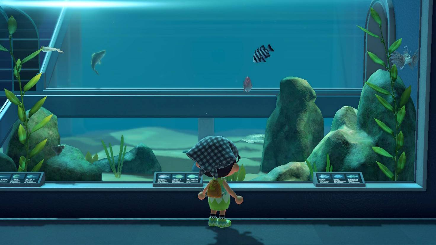 Animal Crossing New Horizons Aquarium