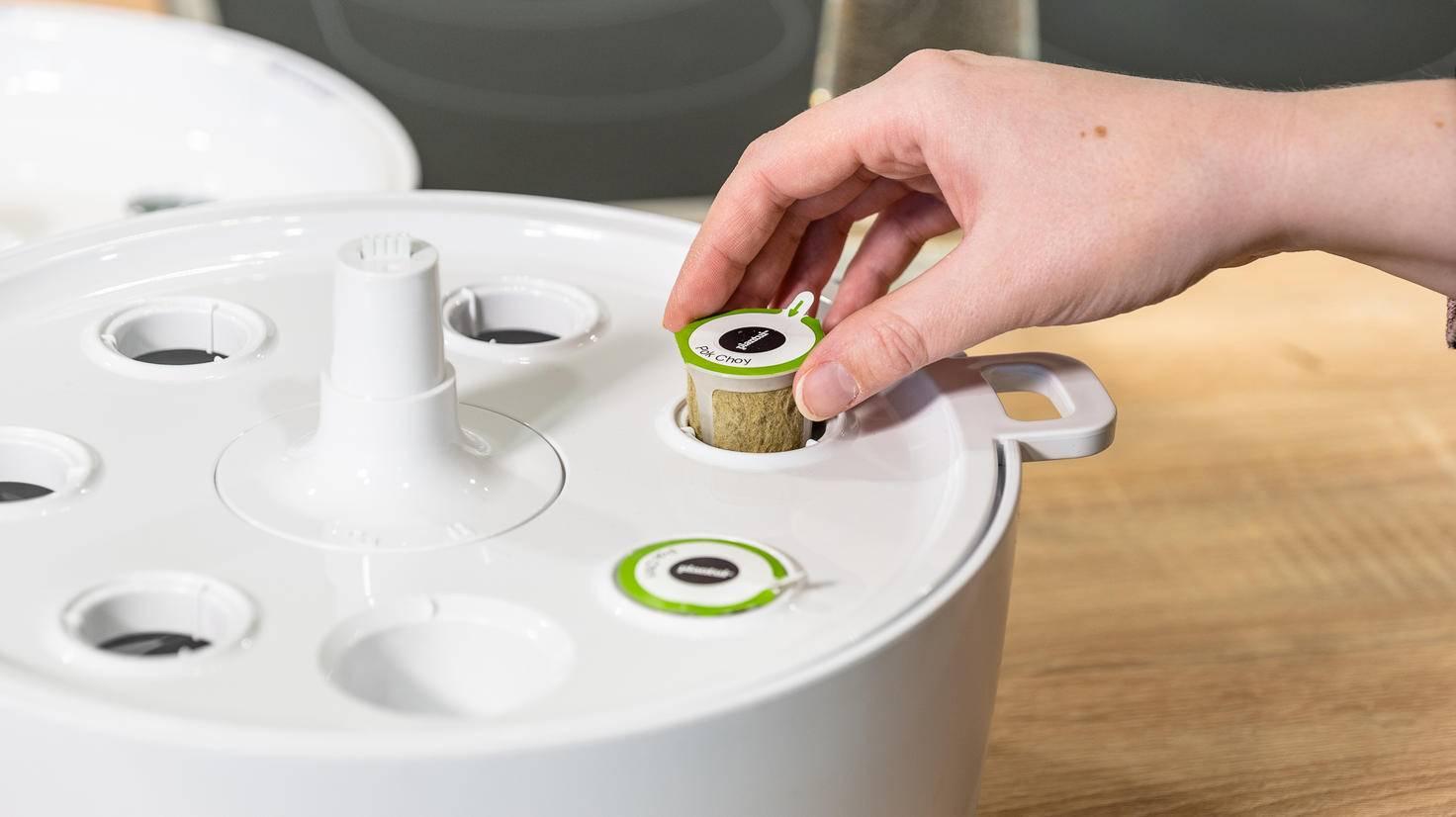 Bosch SmartGrow bepflanzen