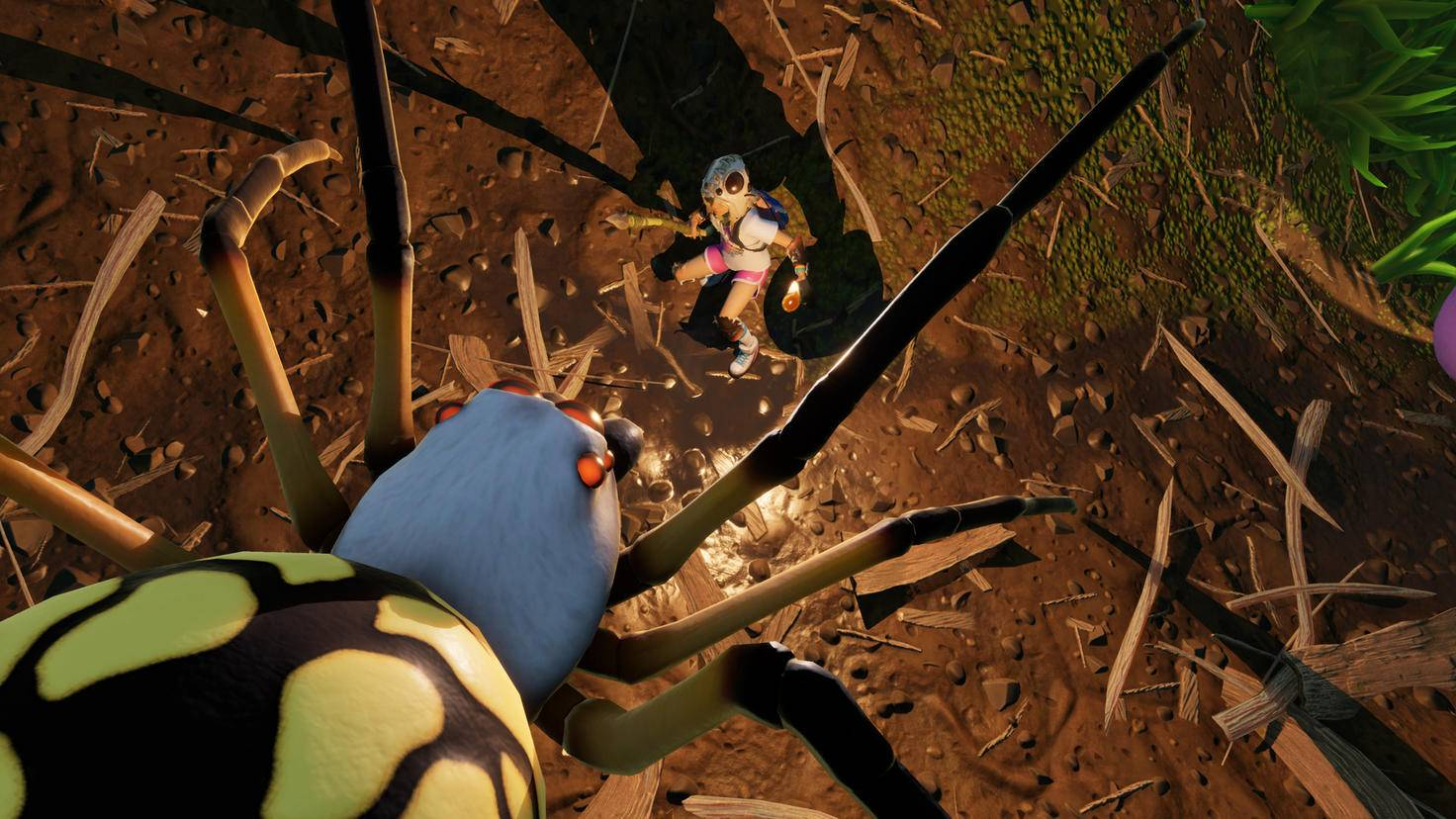 Spinnen machen nichts als Ärger. Baue nicht in der Nähe ihrer Höhlen!