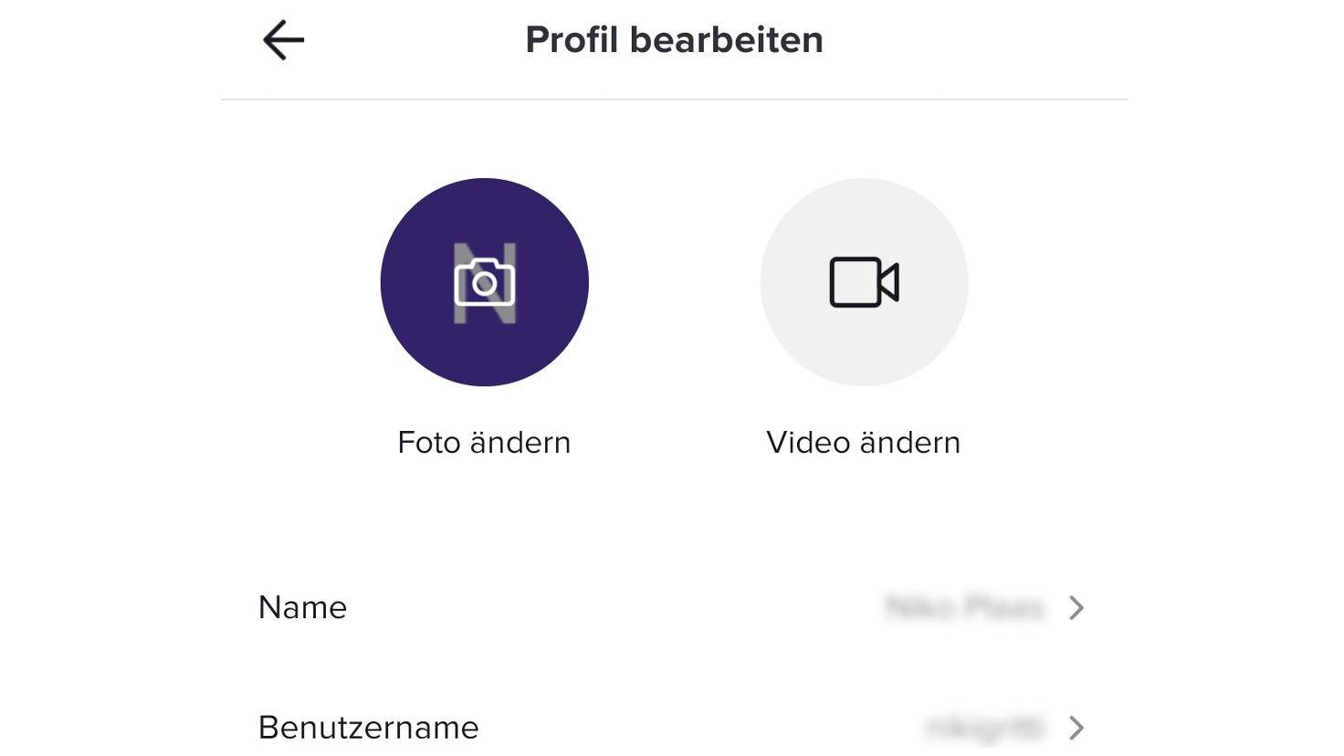 In Deinem TikTok-Profil finden sich zwei Namensangaben.