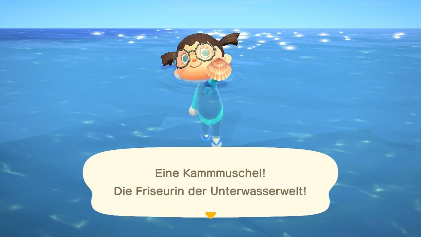 Animal Crossing New Horizons Kammmuschel