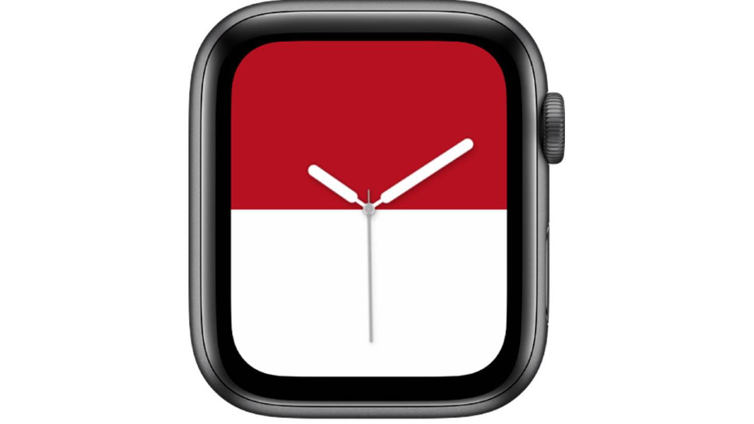 Apple Watch Streifen