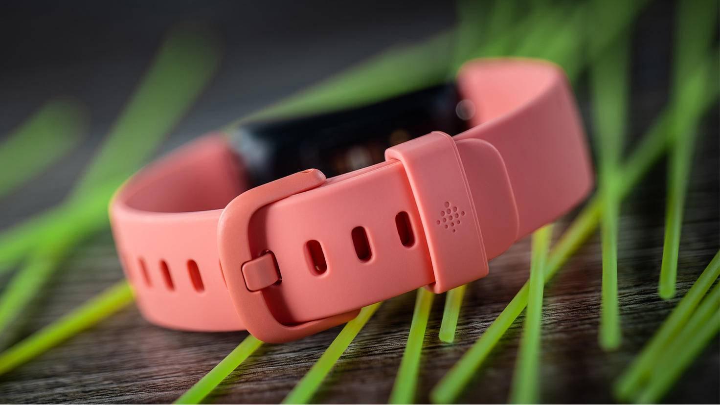 Fitbit Inspire 2 Verschluss