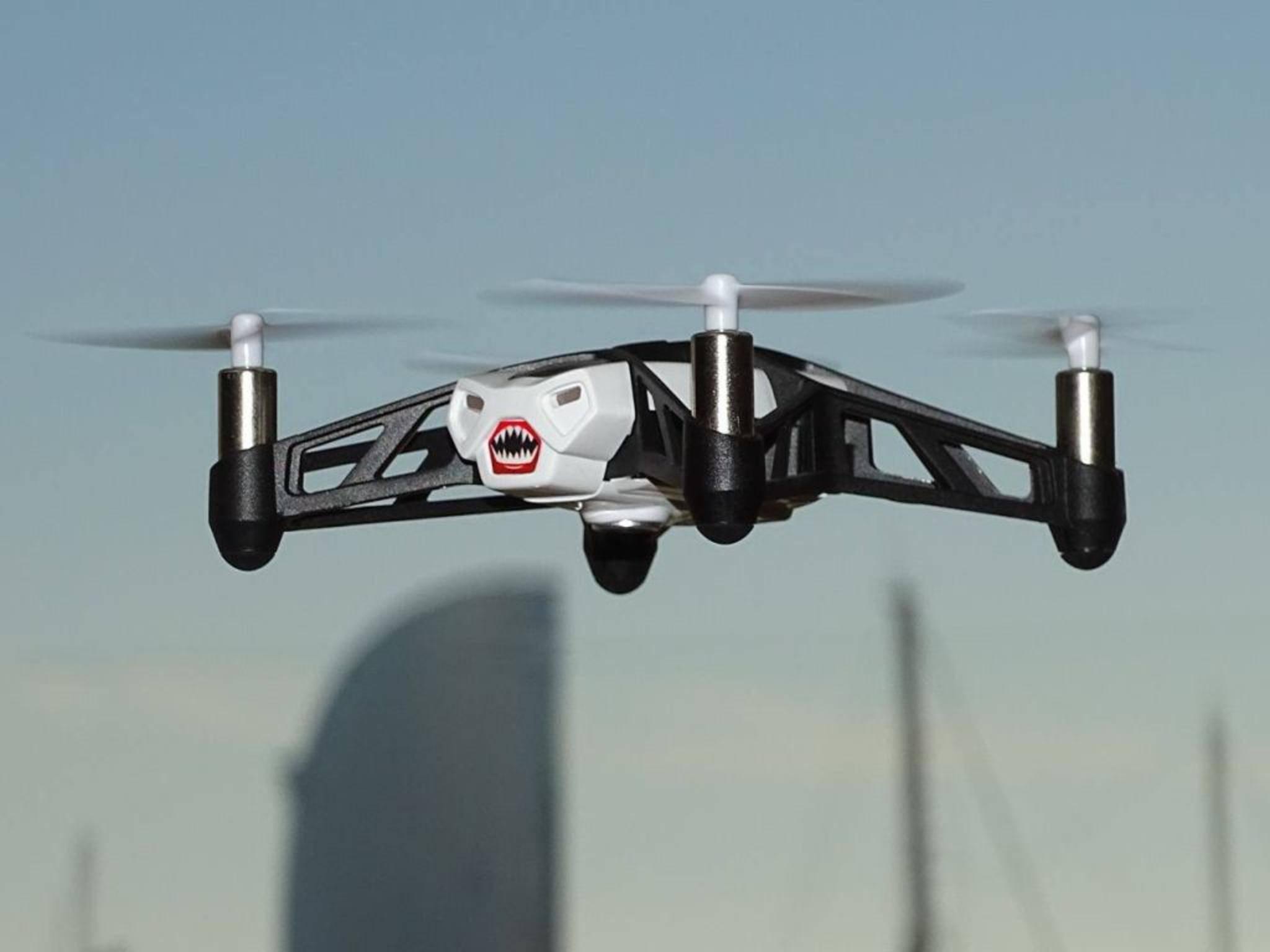Sie sieht aggressiv aus, aber gefährdet sie auch die Privatsphäre? Eine Drohne im Einsatz.