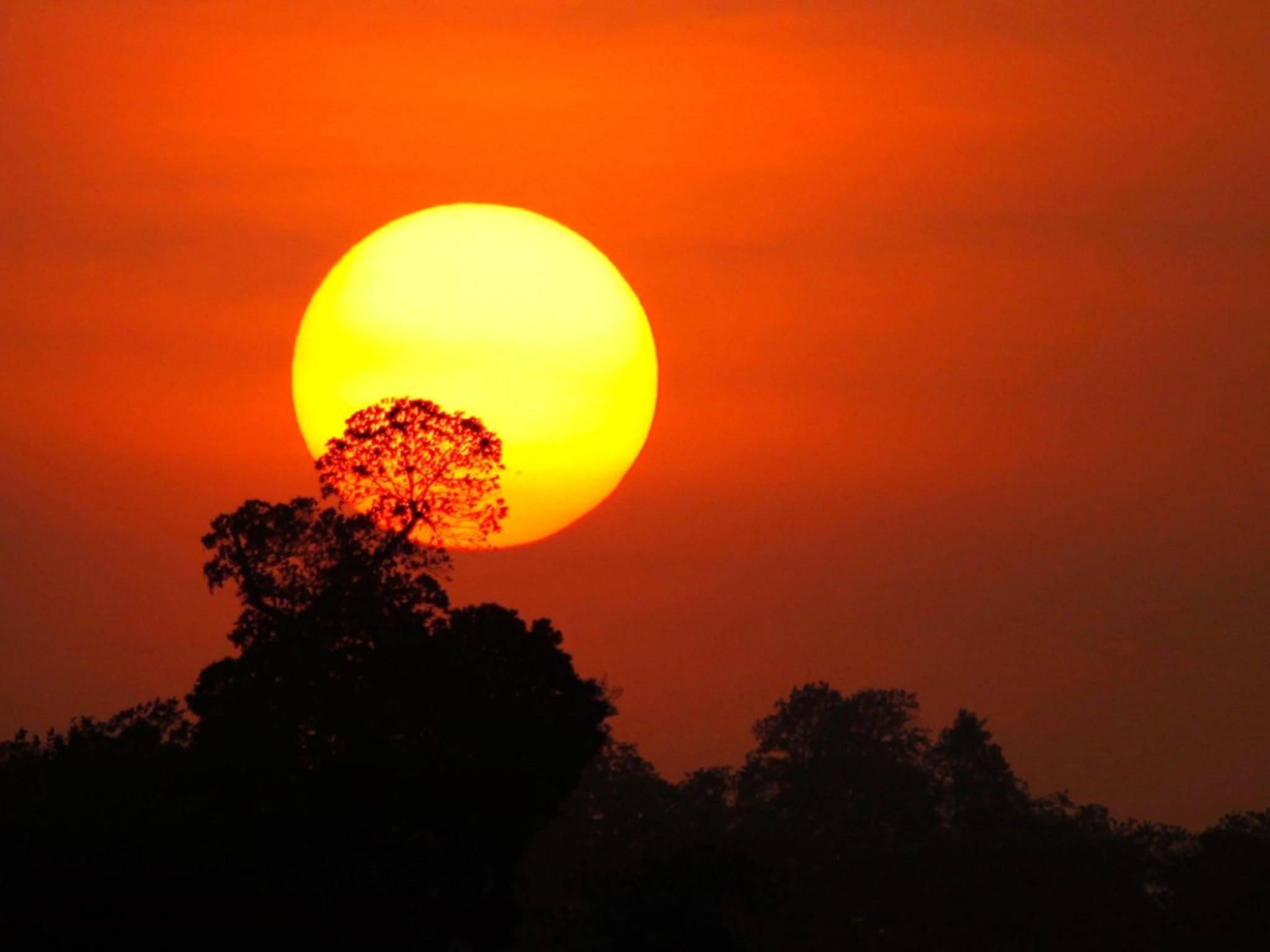 Ein schönes Foto vom Sonnenuntergang sorgt für Urlaubsstimmung.