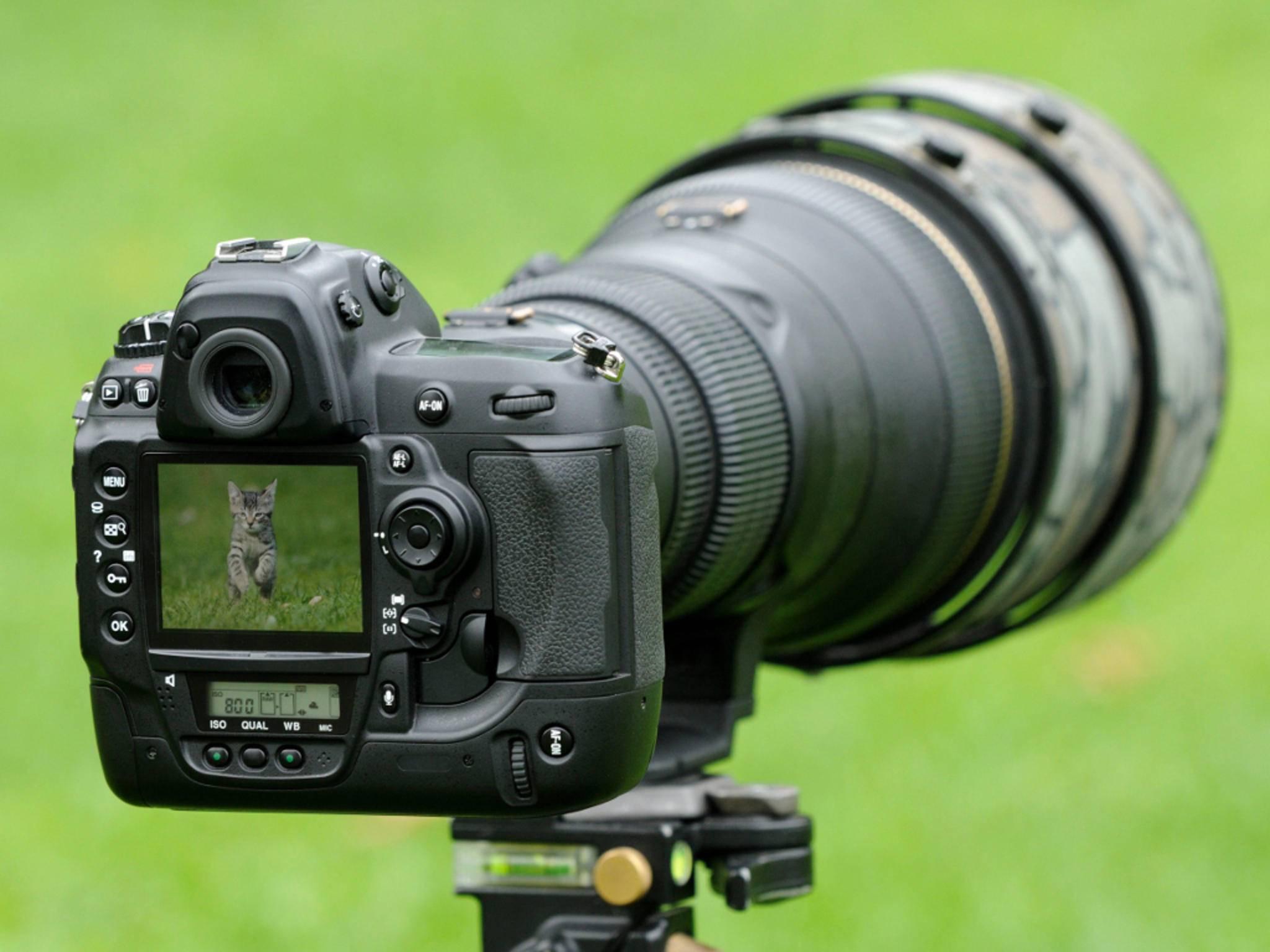 Beim Fotografieren in der freien Wildbahn musst Du ein paar Dinge beachten.