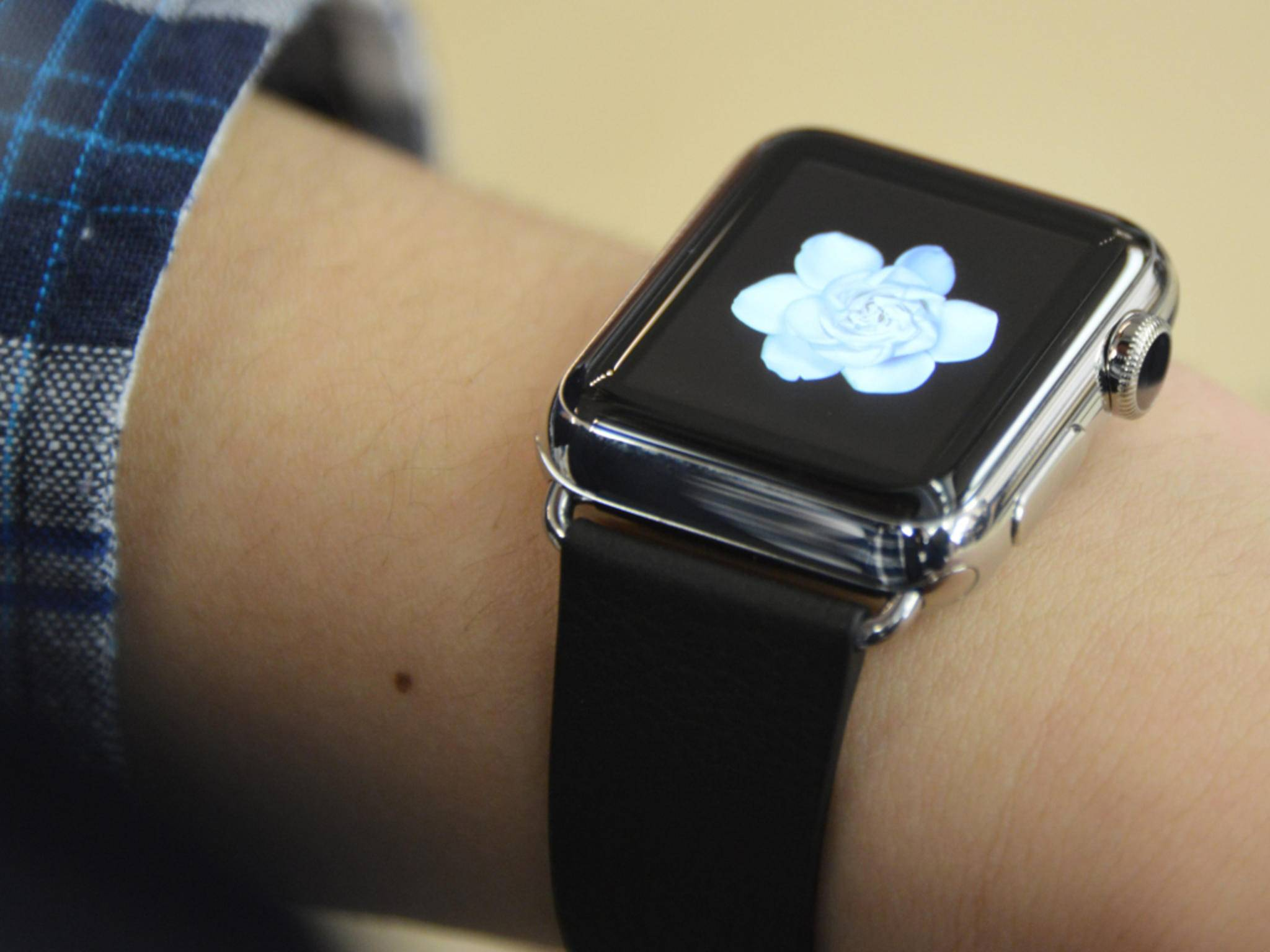 Unter der Armband-Halterung der Apple Watch verbirgt sich ein geheimer Anschluss.