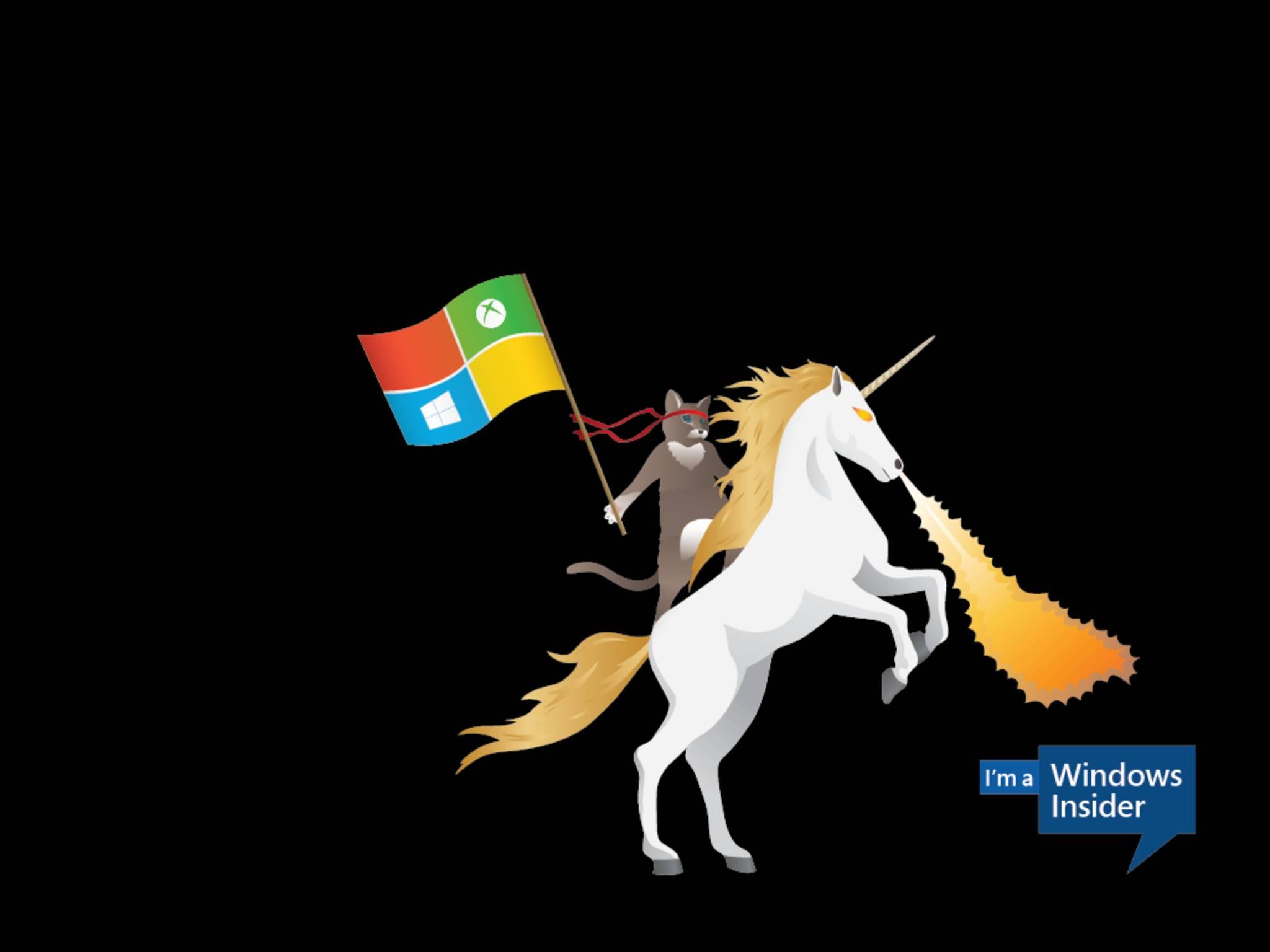 Irrer Blödsinn von Microsoft: Die Ninjacat reitet auf einem Feuer speienden Einhorn.