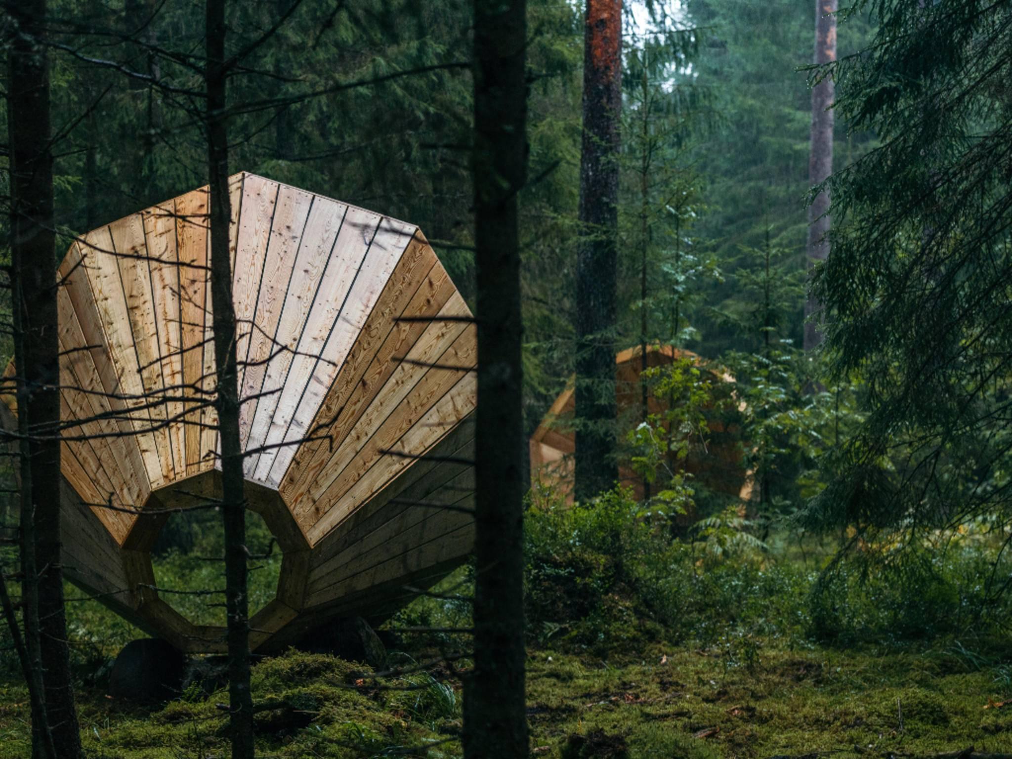 Wald-Megafone in Estland