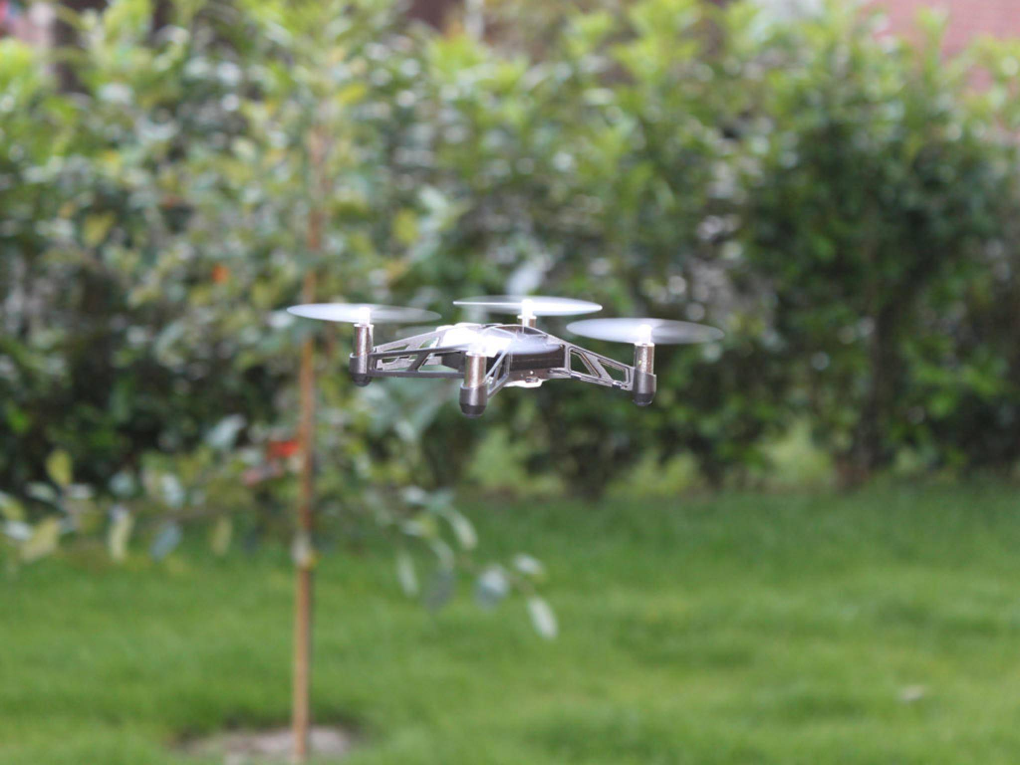 Selbst Loopings beherrscht der Quadcopter mühelos.