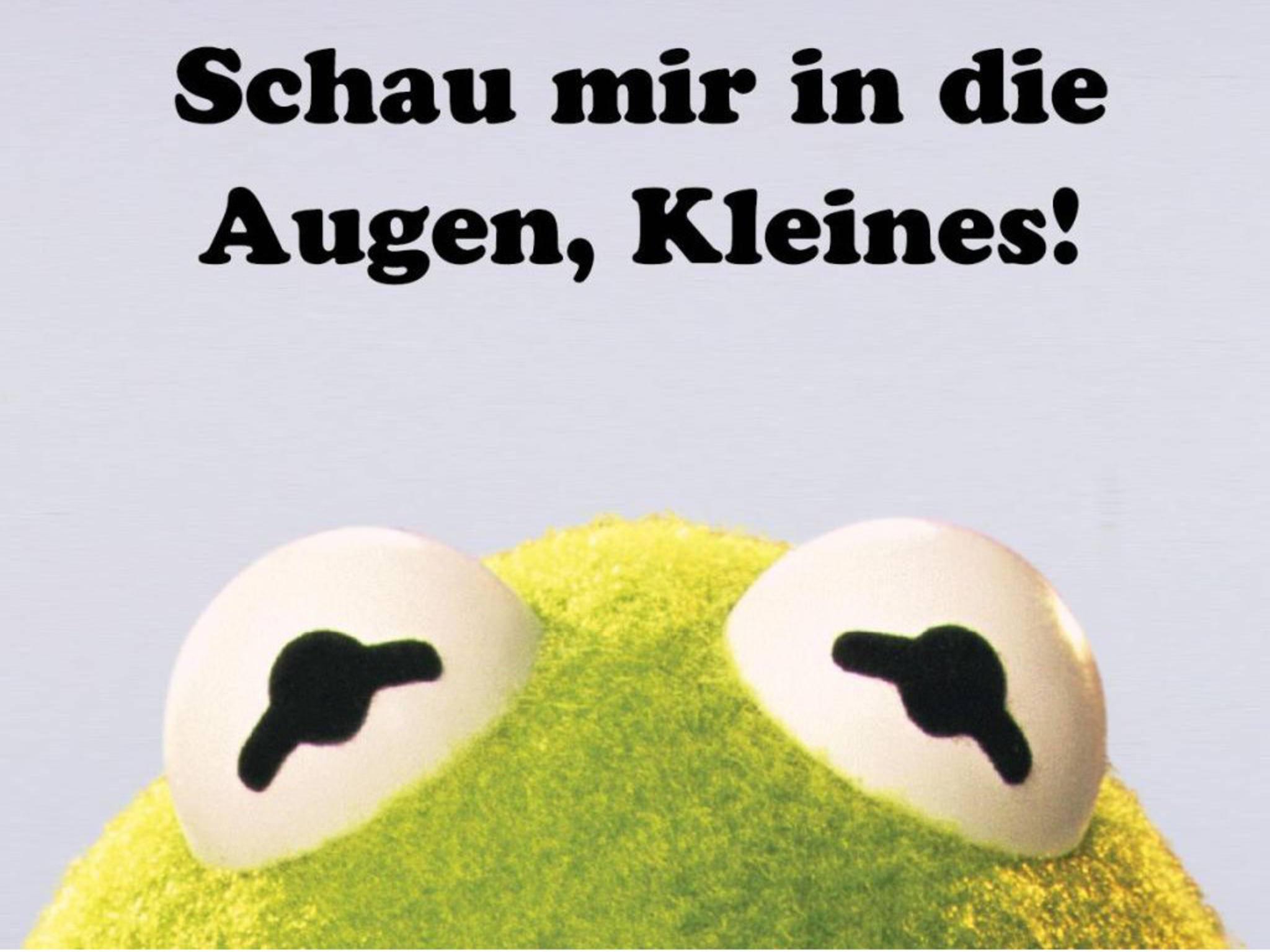 WhatsApp Bilder Facebook_Die Muppets 1