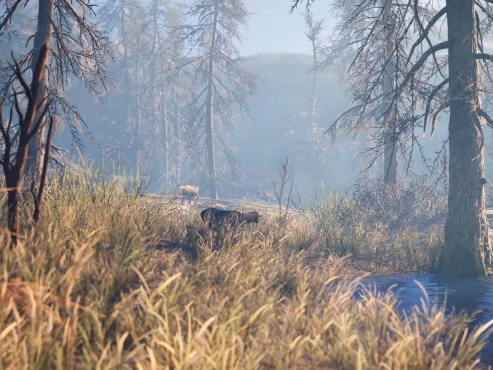 Far Cry Primal Screenshot 7
