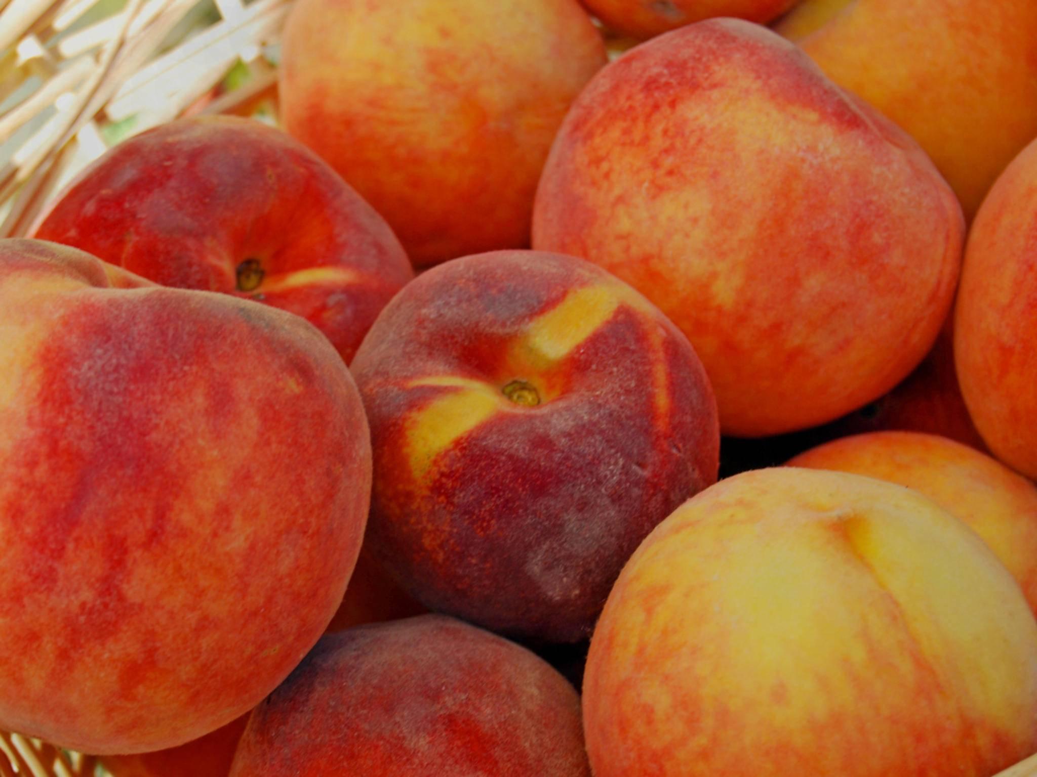 Peach ist eine Mischung aus Messenger und sozialem Netzwerk.