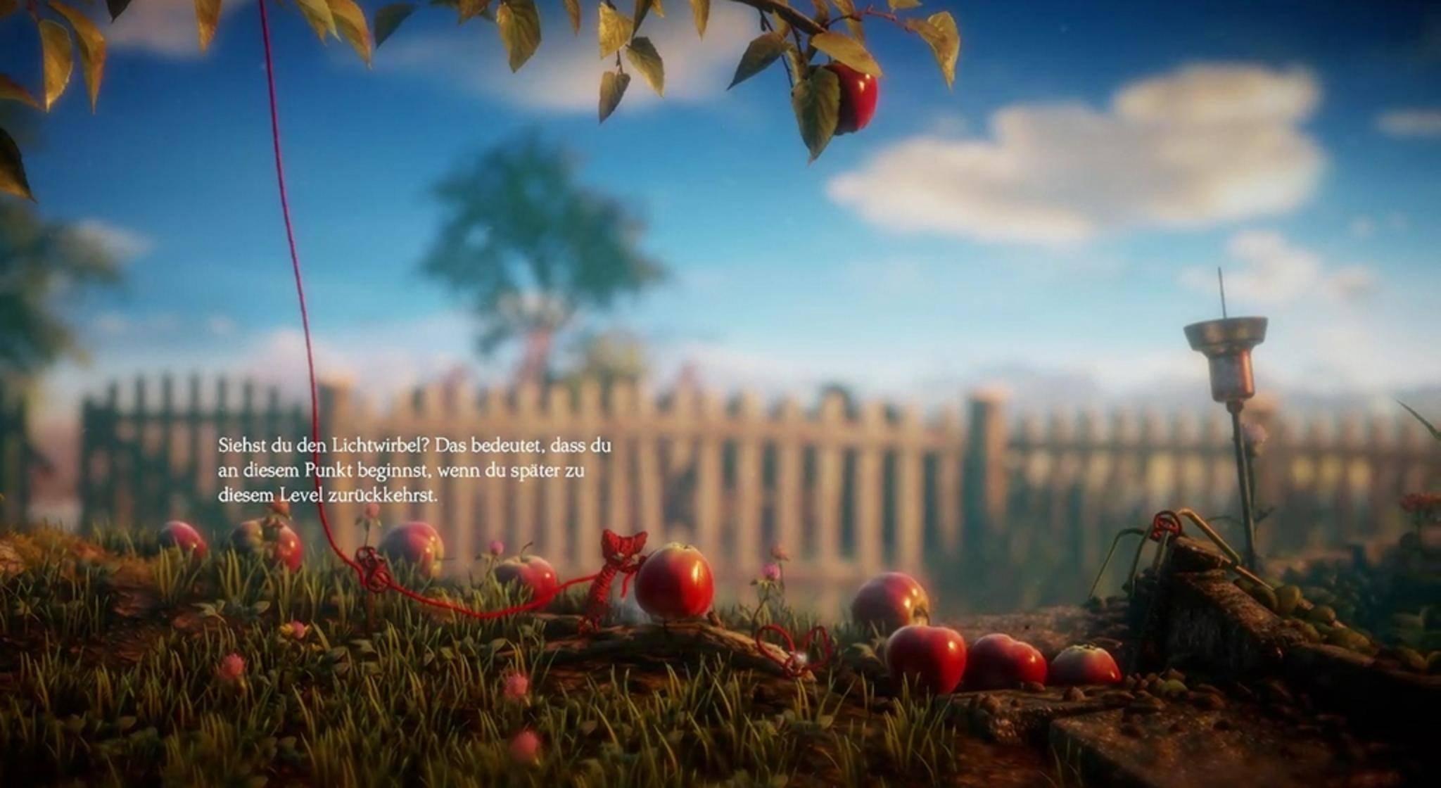 In diese Äpfel möchte man am liebsten reinbeißen.