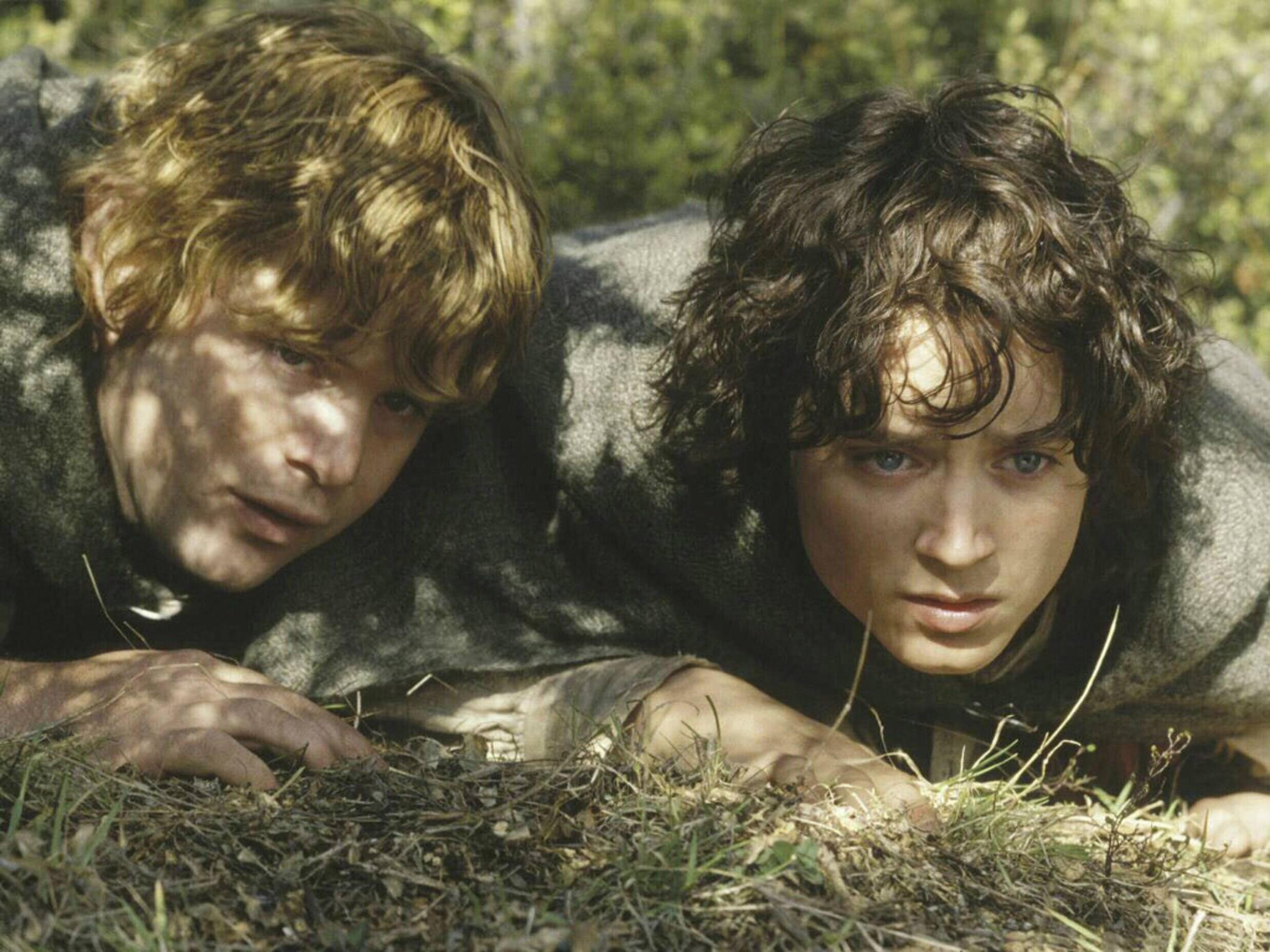 Frodo und Sam