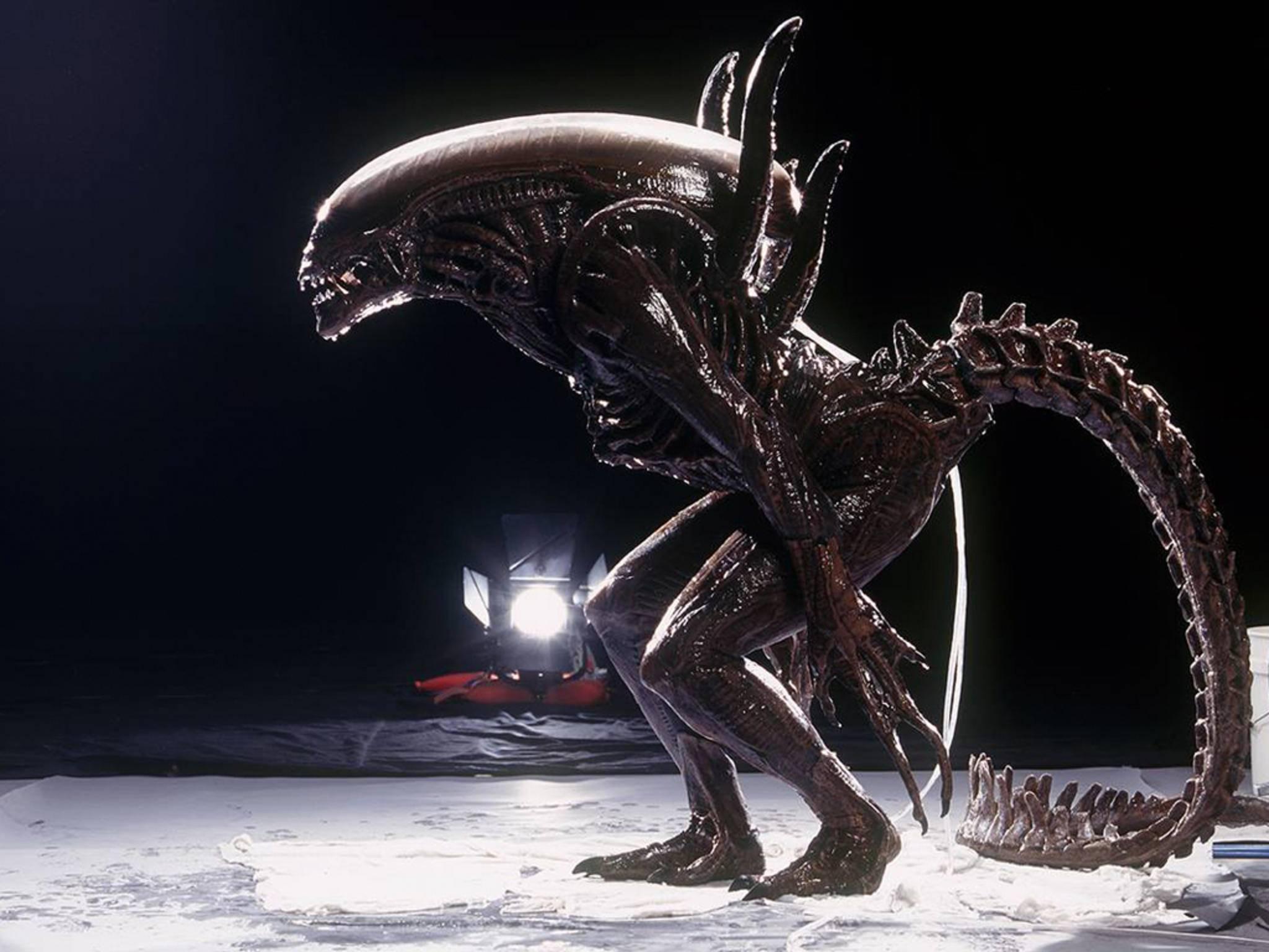 Viele Regisseure setzen auf echte Modelle statt auf CGI.