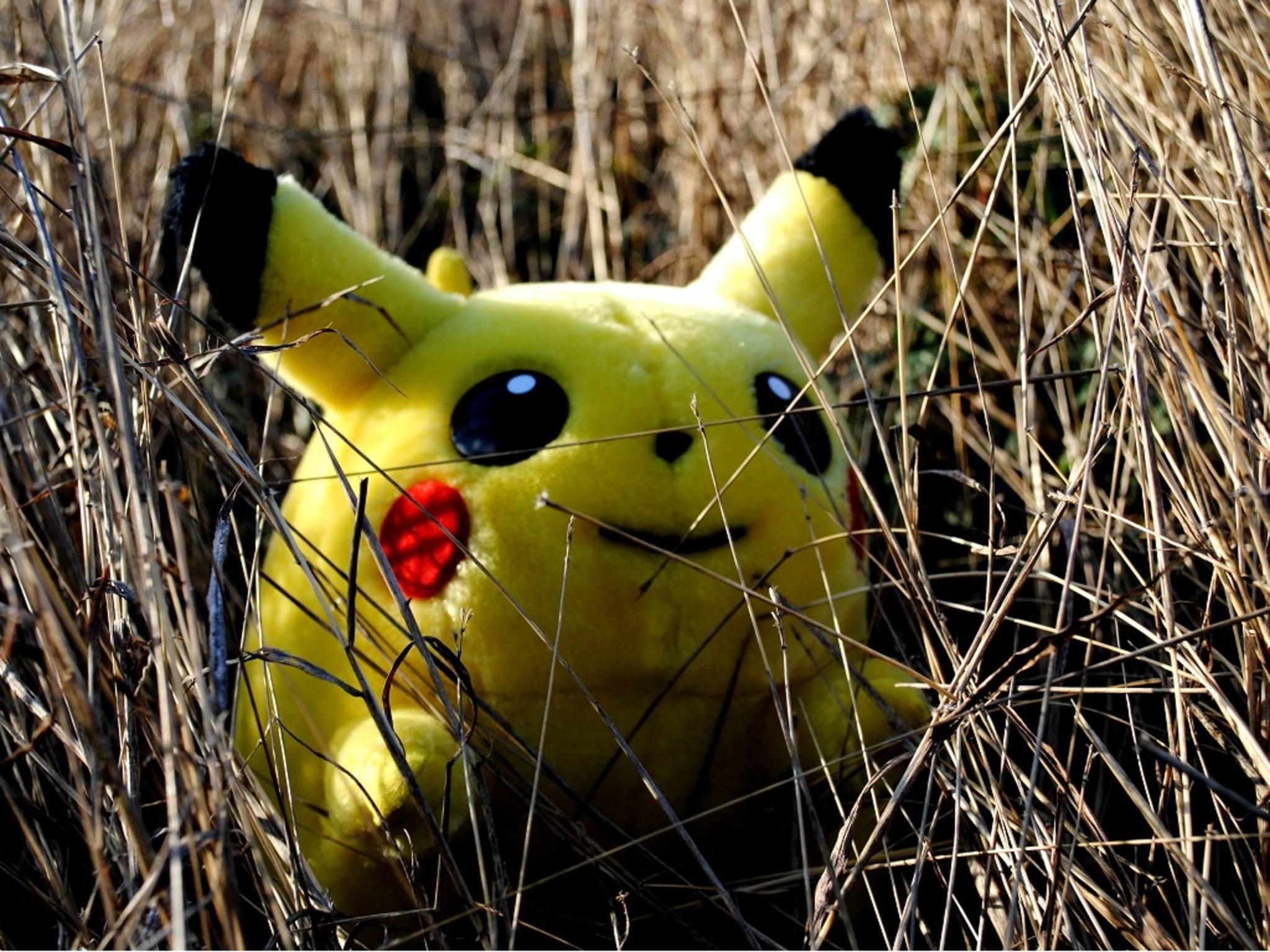 Leider findet man Pokéstops nicht immer an so harmlosen Orten wie einem Kornfeld.
