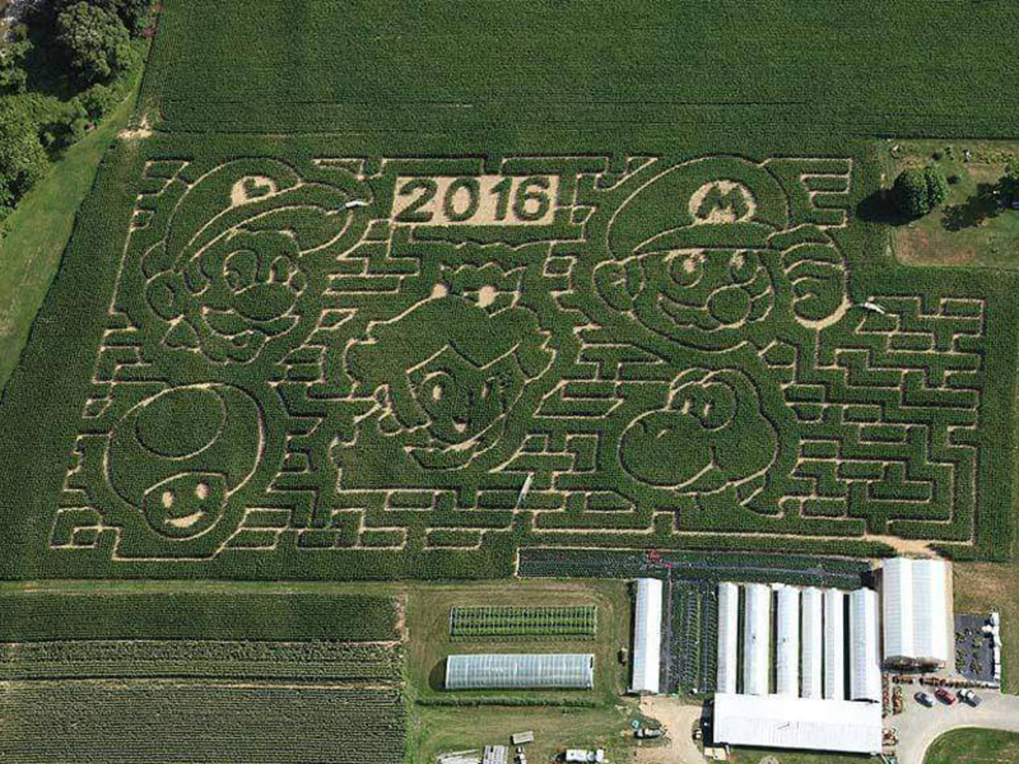 Ein riesiges Maislabyrinth aus Super Mario-Figuren.