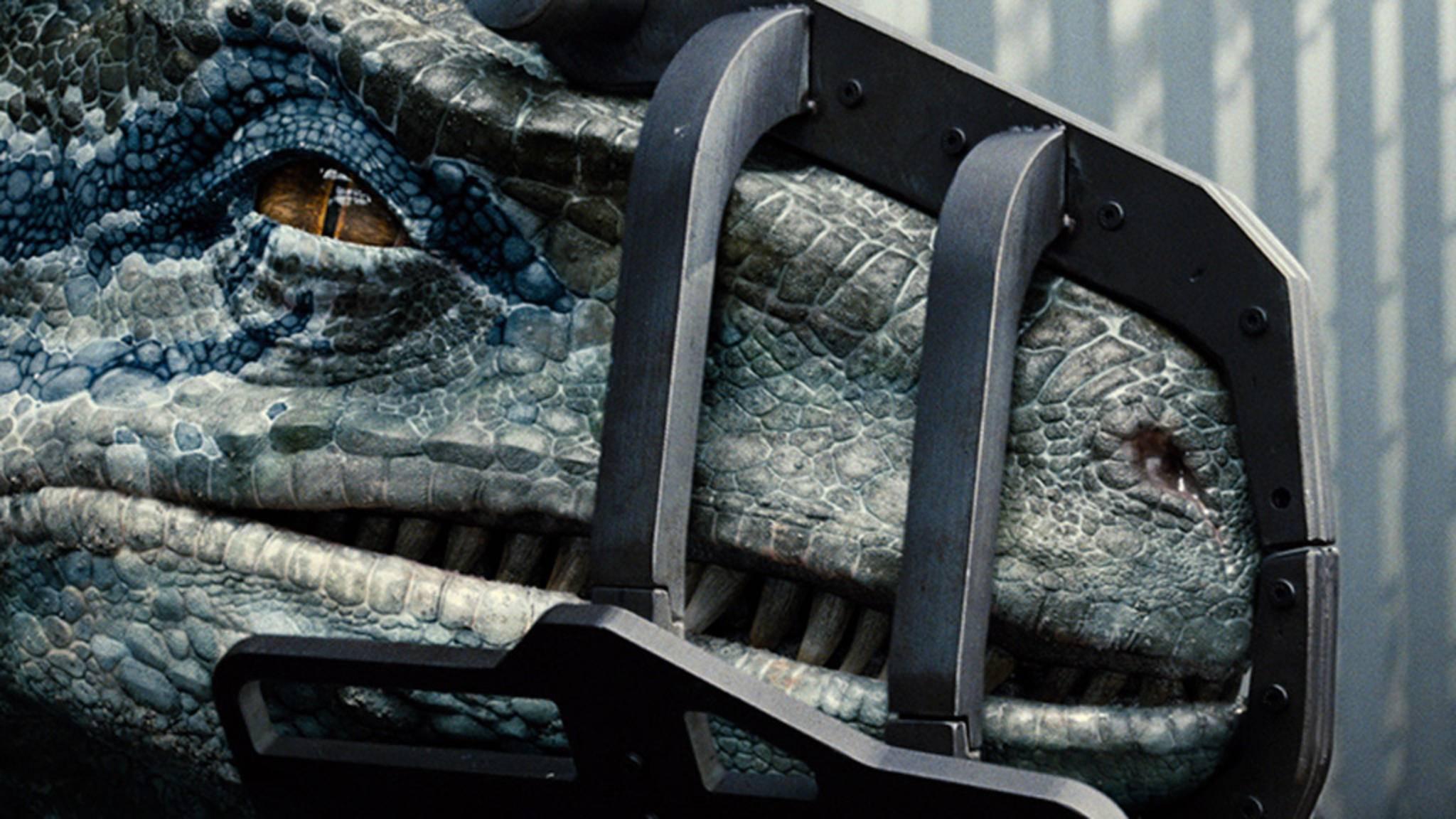 """""""Jurassic World 2"""" zeigt Dinosaurier als Opfer statt als Monster."""