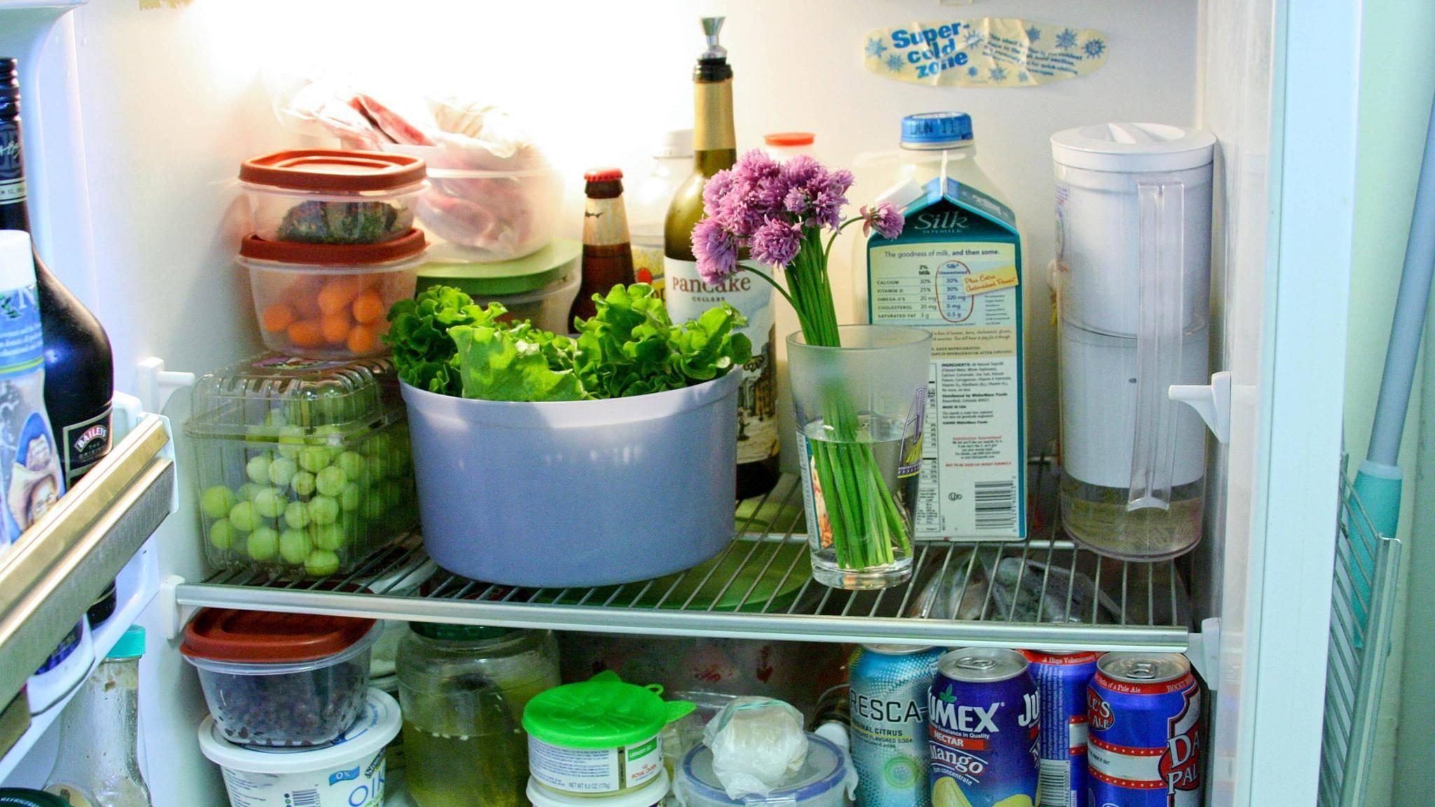 Es gibt für jedes Lebensmittel den richtigen Platz im Kühlschrank.