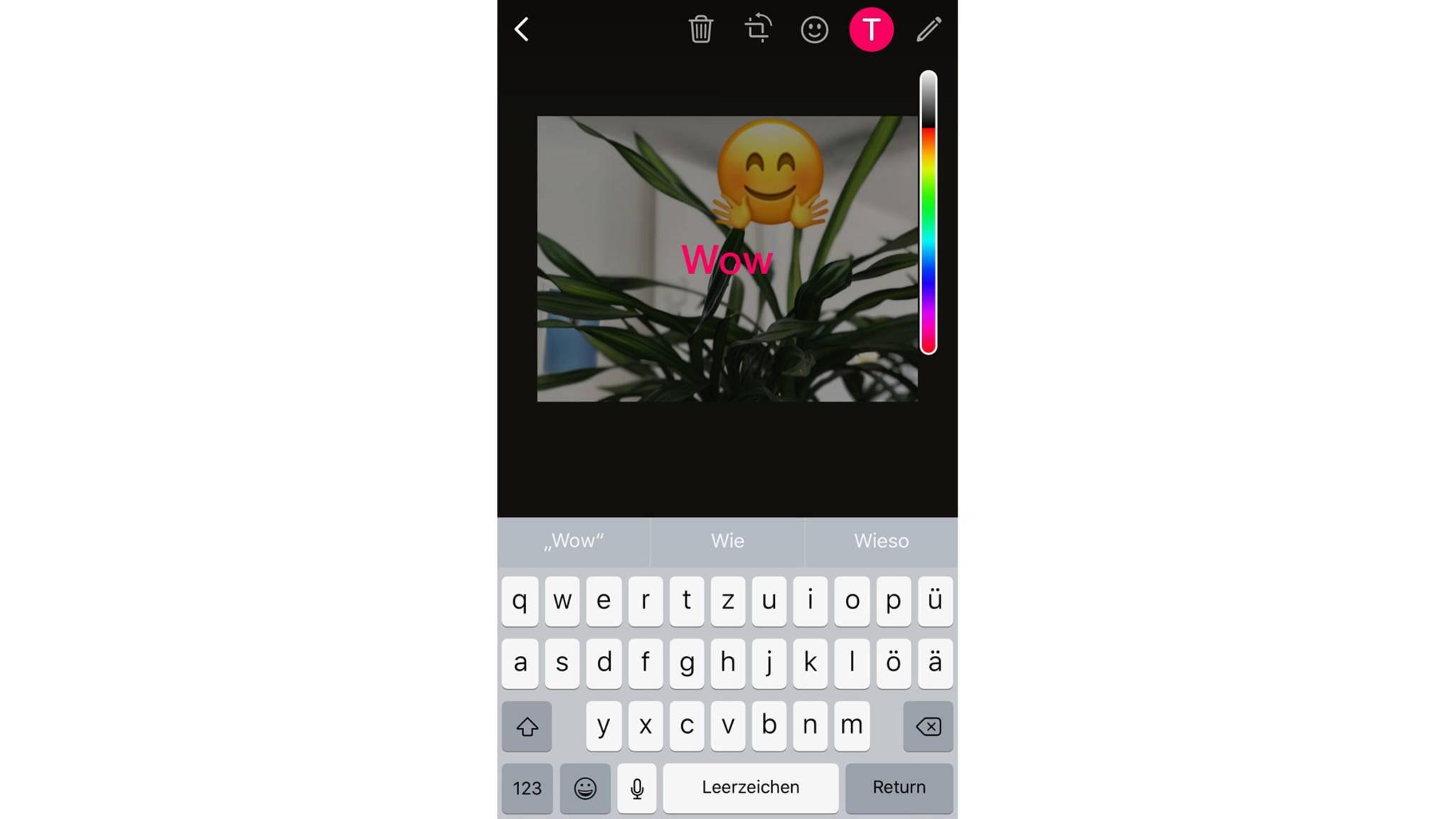 Auch Text kann direkt auf das Foto geschrieben werden.