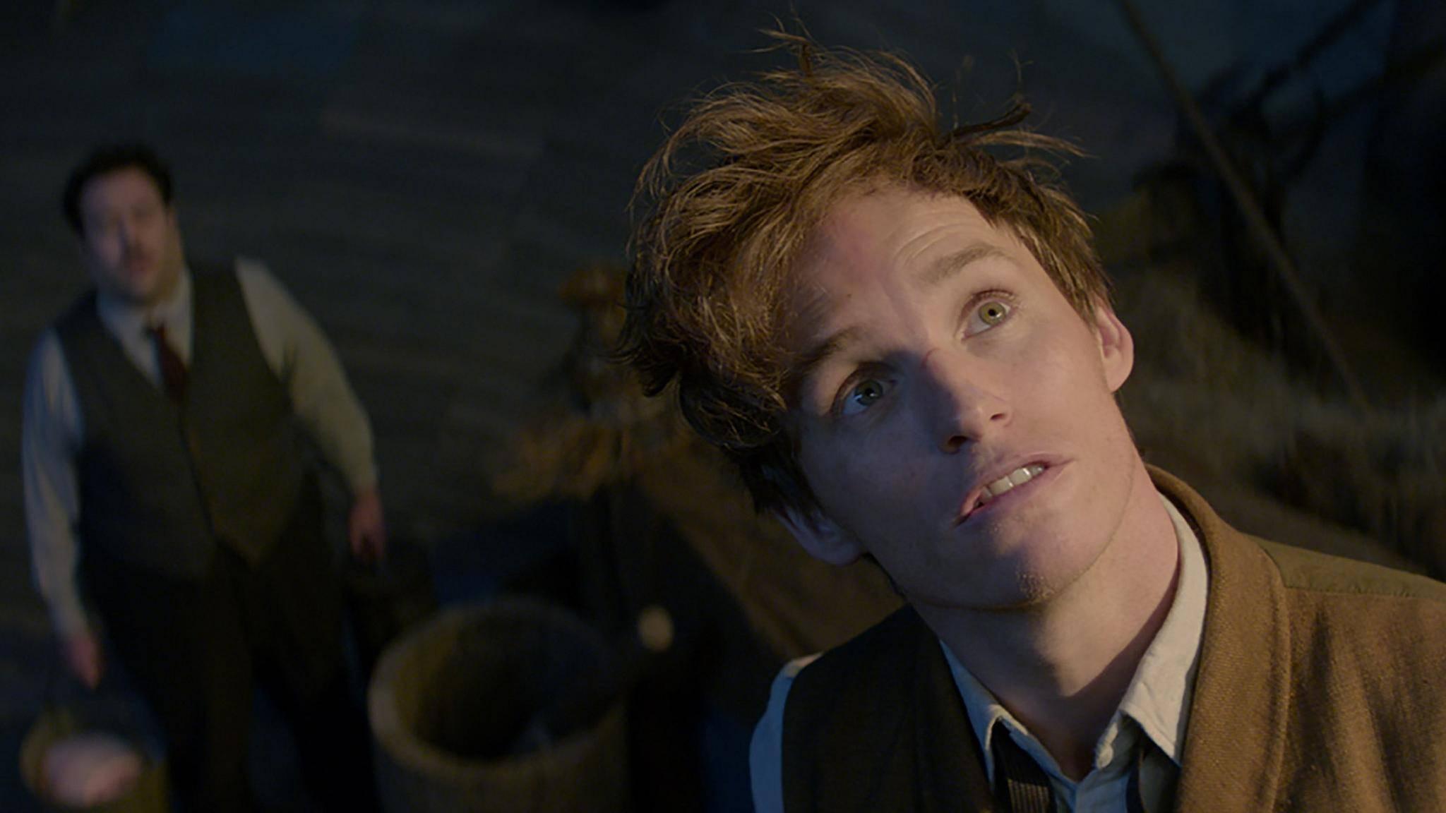 Auch der junge Newt Scamander (Eddie Redmayne) war offenbar für Überraschungen gut.