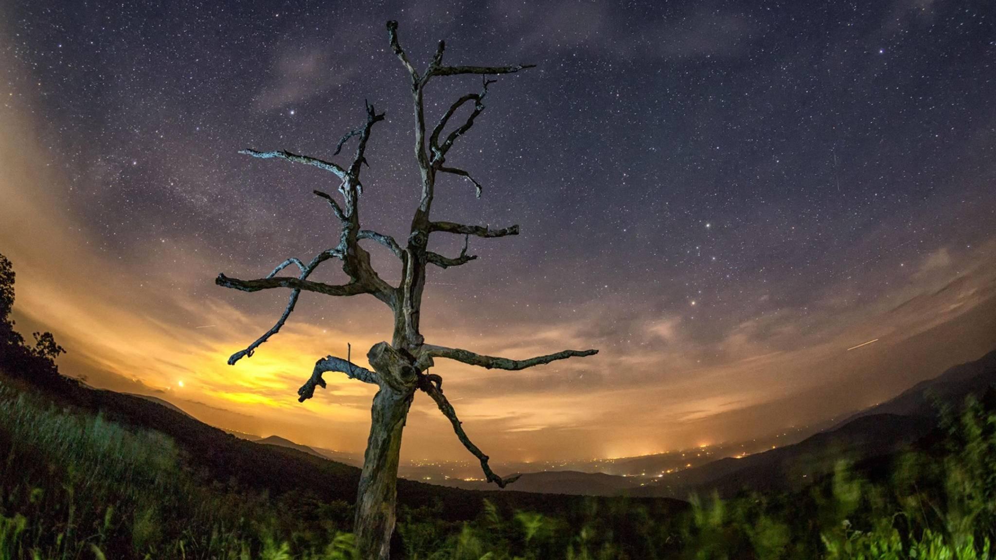 Beleuchtung verbirgt die Zauber des Nachthimmels.