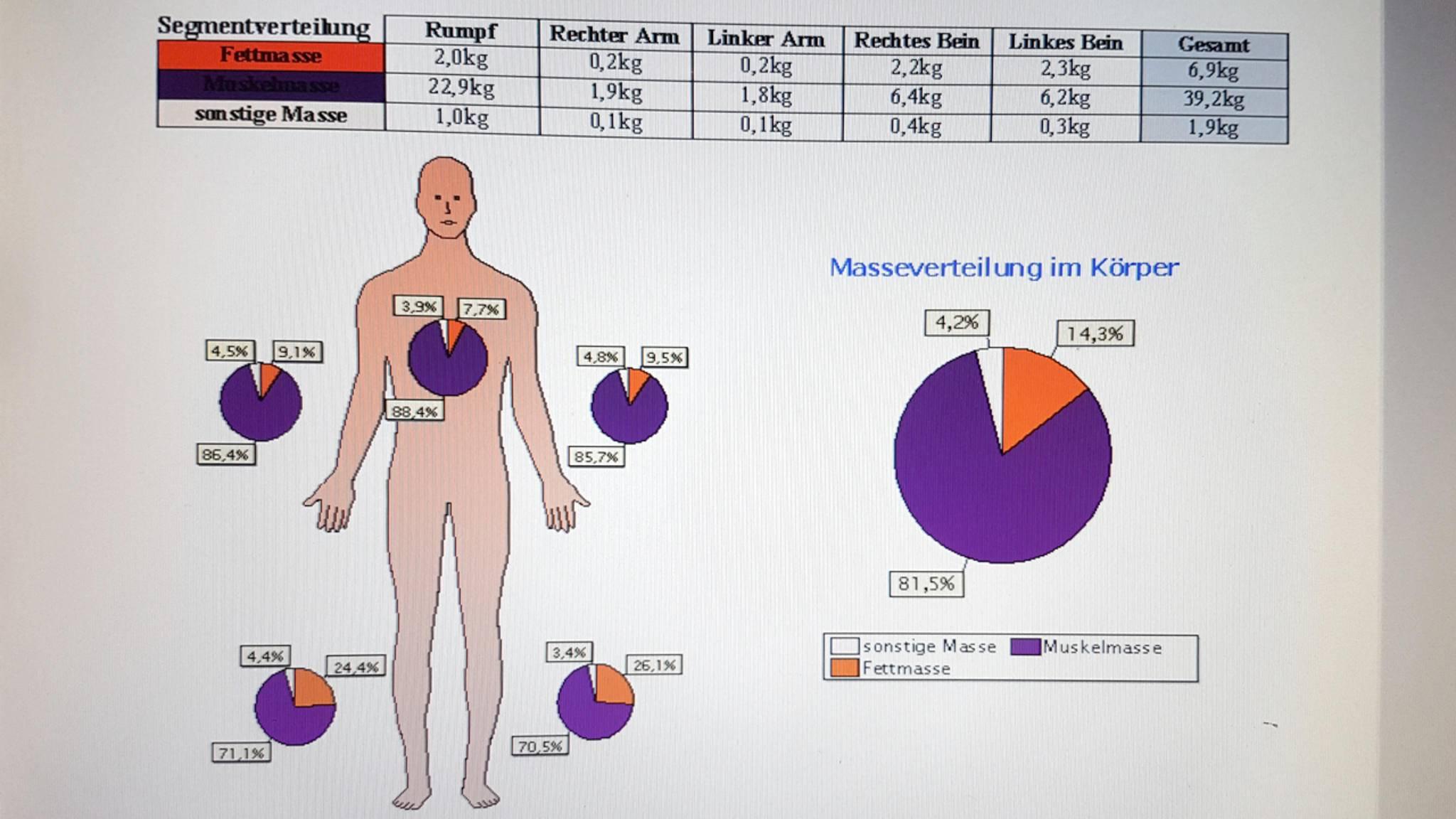 Körperanalyse 4