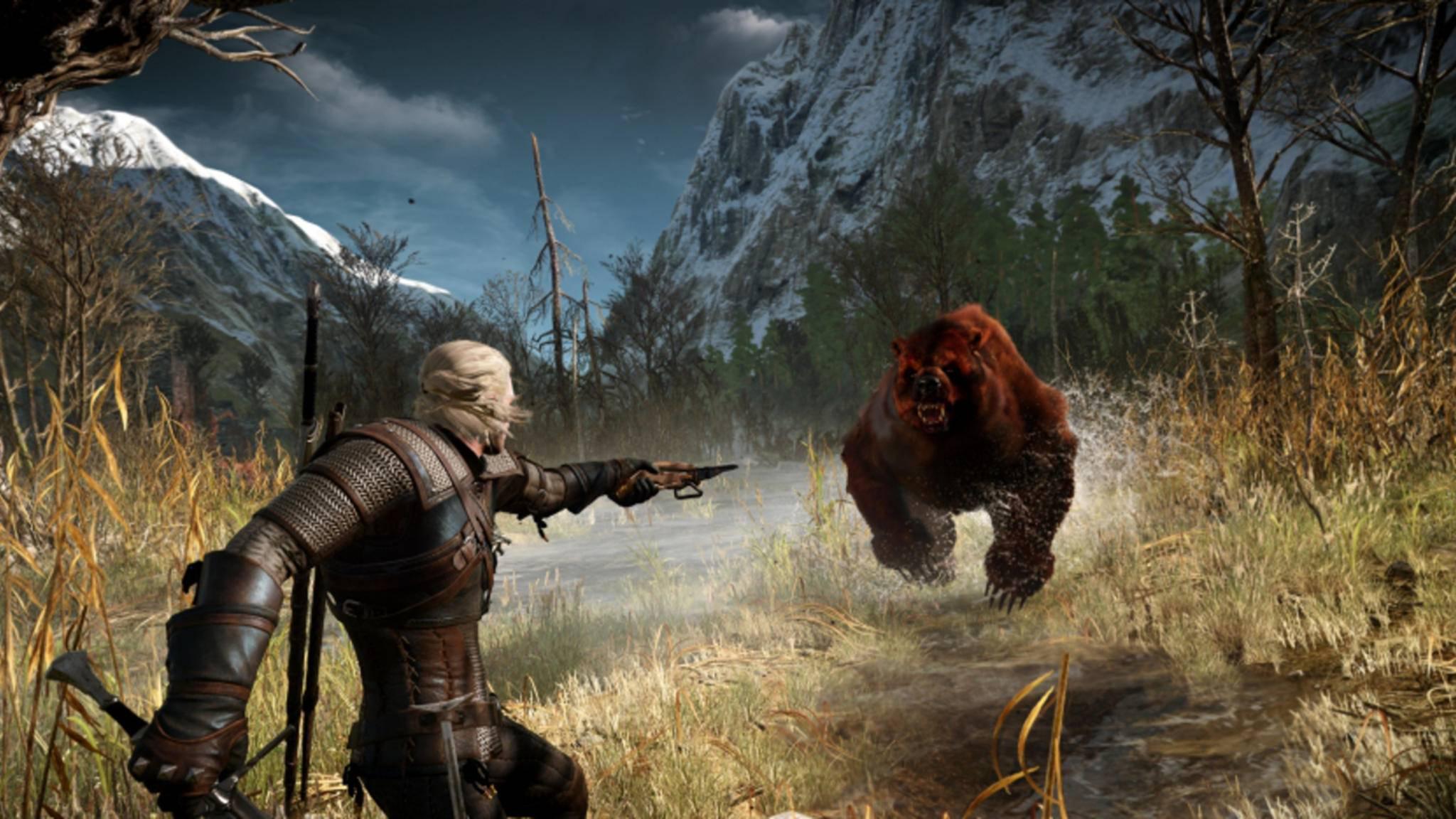 """Statt Geralt wird sich im nächsten """"Witcher""""-Spiel jemand anderes mit wilden Bären anlegen."""