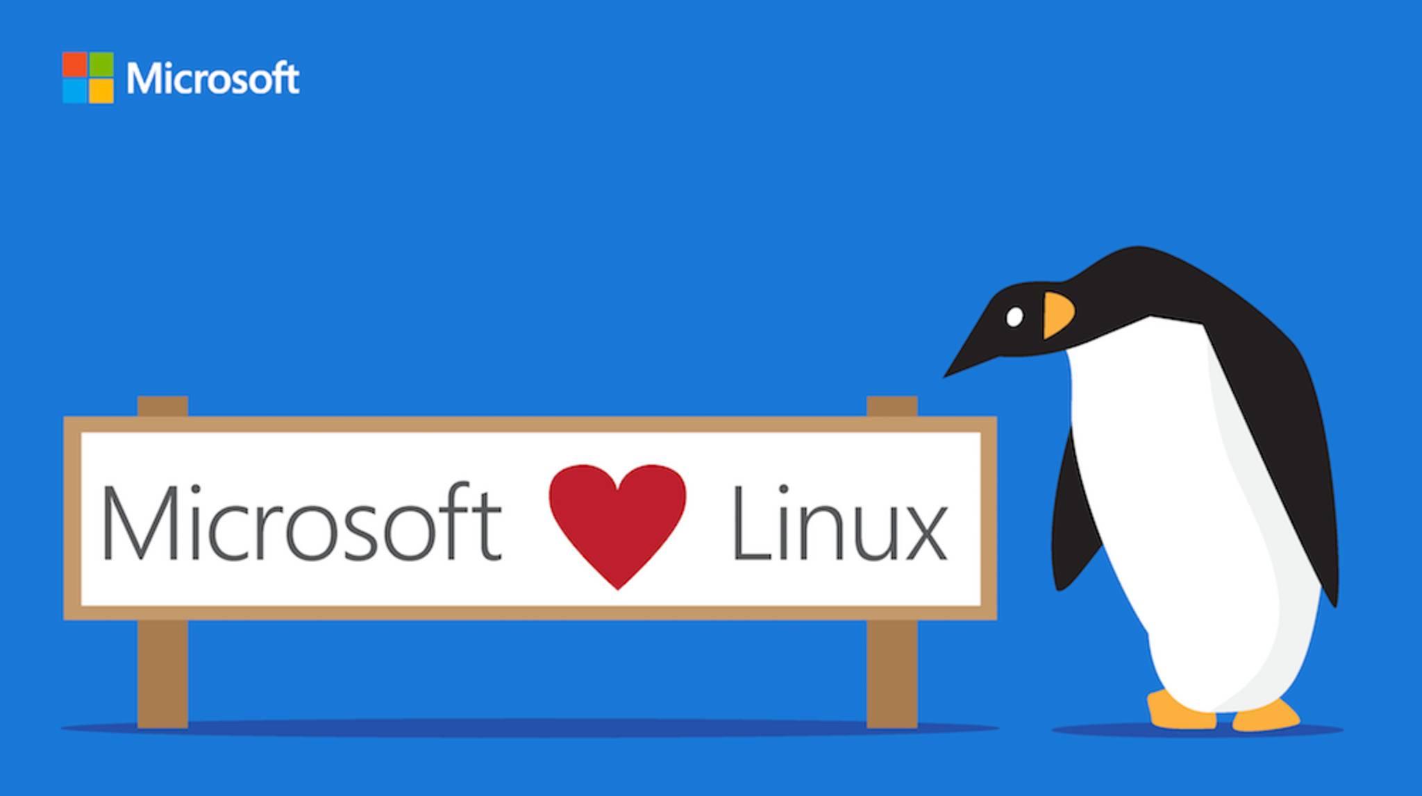 Microsoft mag inzwischen Linux, aber für Durchschnittsanwender ist Linux noch immer nichts.
