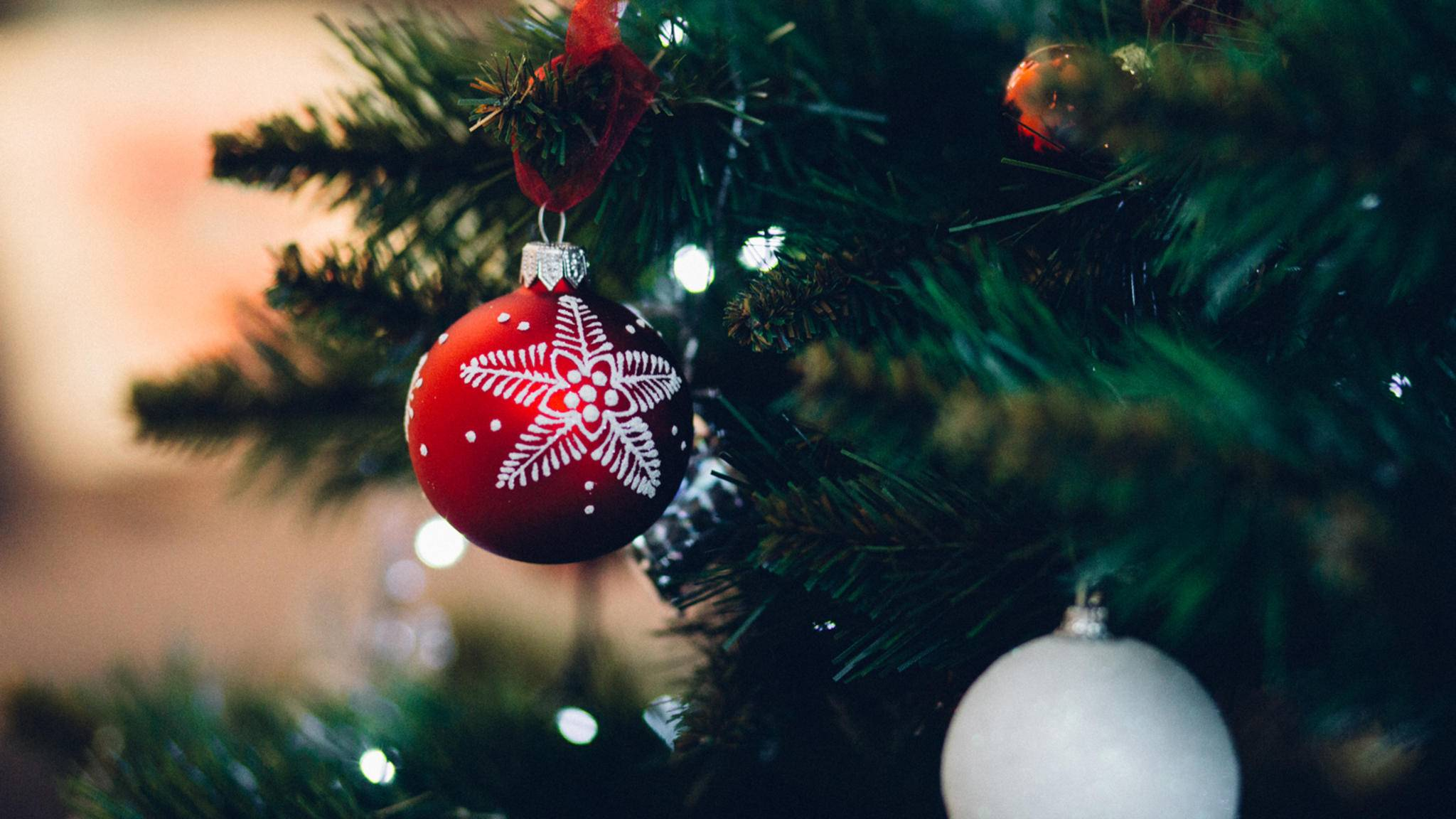Unter dem Tannenbaum wird zu Weihnachten gerne gesungen – doch nicht alle beliebten Weihnachtslieder handeln vom Fest der Liebe.