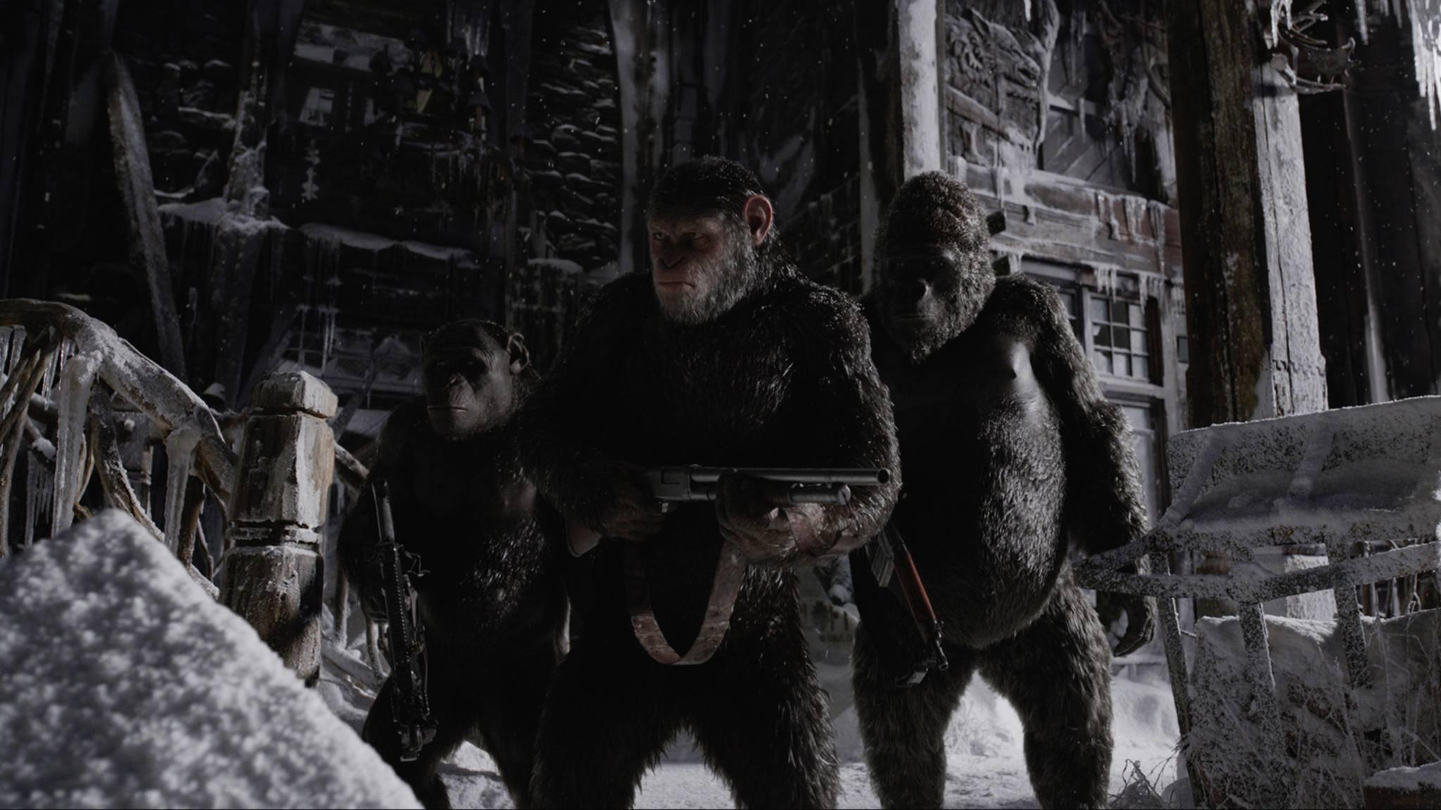 """Überlebenskampf: In """"Planet der Affen 3"""" kommt es zum Krieg zwischen Affen und Menschen."""