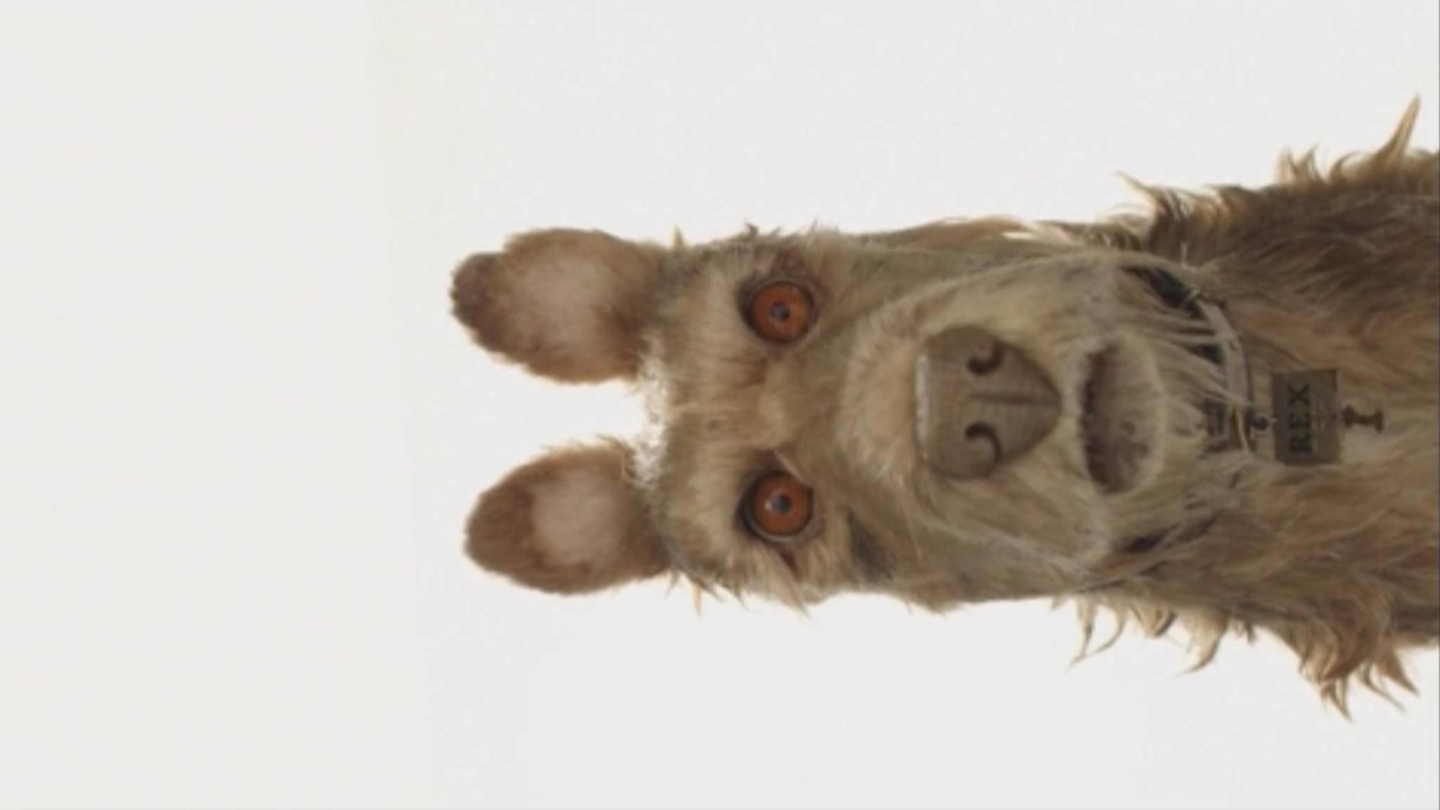"""Edward Norton spricht in Wes Andersons neuem Film """"Isle of Dogs"""" den zotteligen Vierbeiner Rex."""