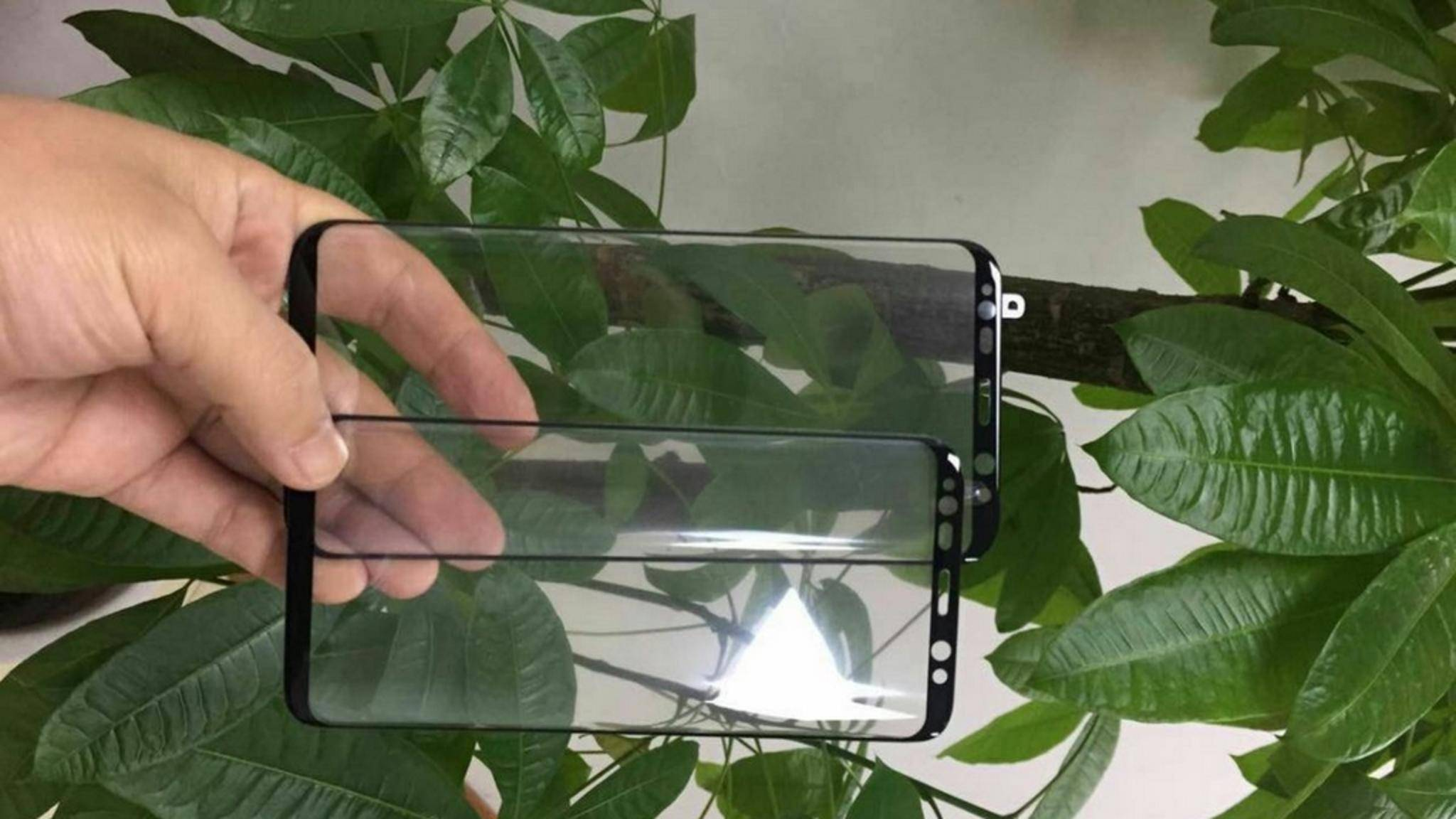Sehen wir hier die ersten echten Bilder vom Galaxy S8?
