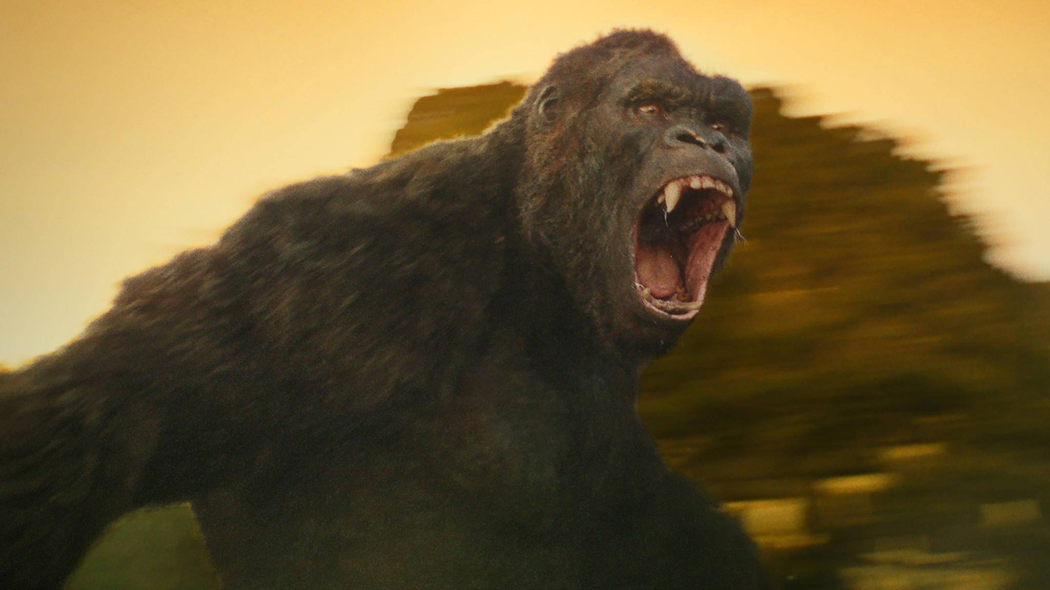 Bei Fremden auf seiner Insel versteht King Kong keinen Spaß!