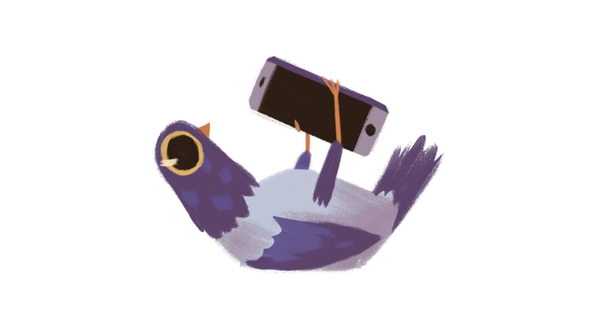 Niedlich oder nervig? Die Trash Dove hat Facebook derzeit fest im Griff.