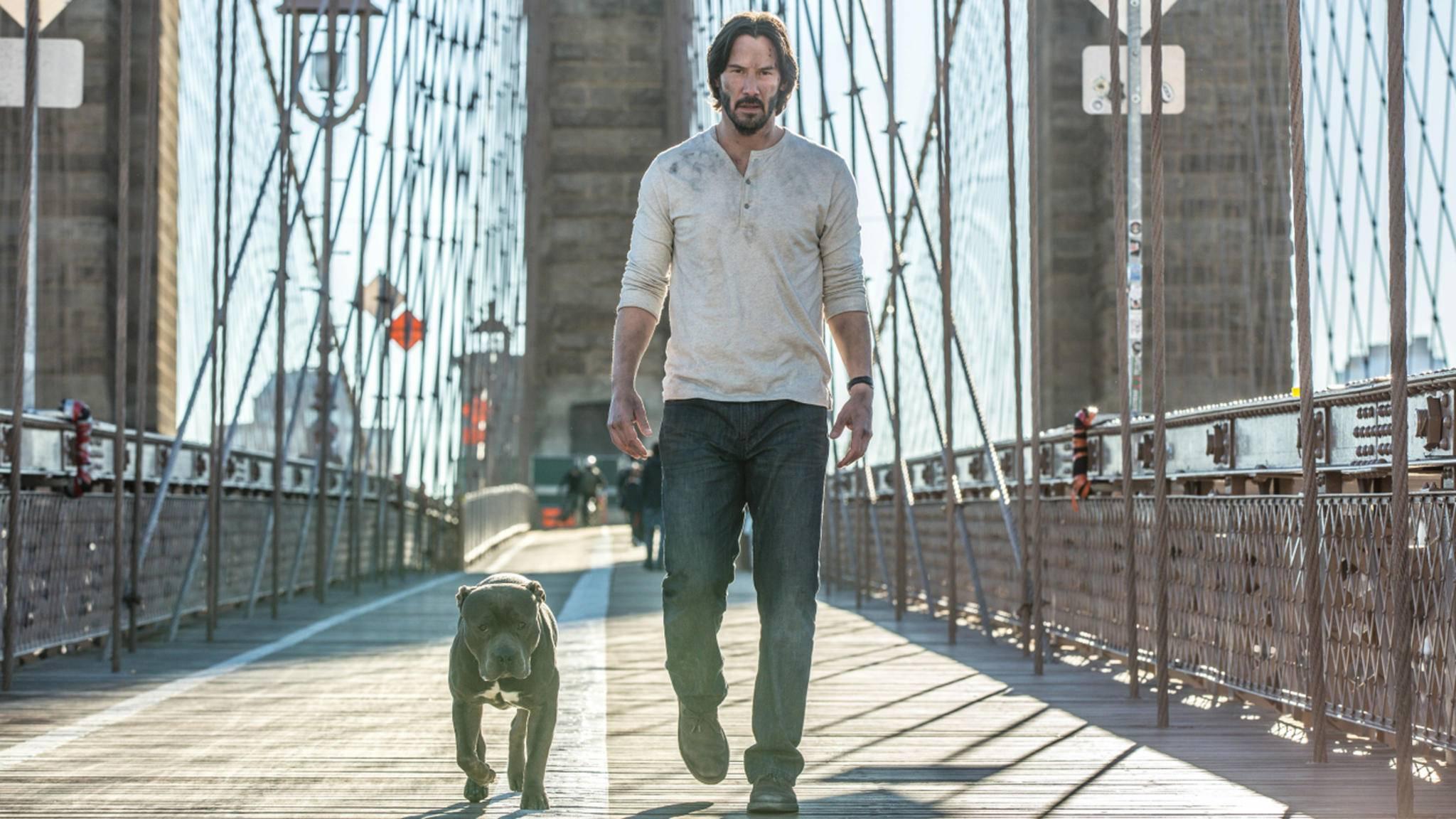 """In """"John Wick: Kapitel 2"""" kommt der Auftragskiller nicht allein: Sein Hund folgt ihm auf Schritt und Tritt."""